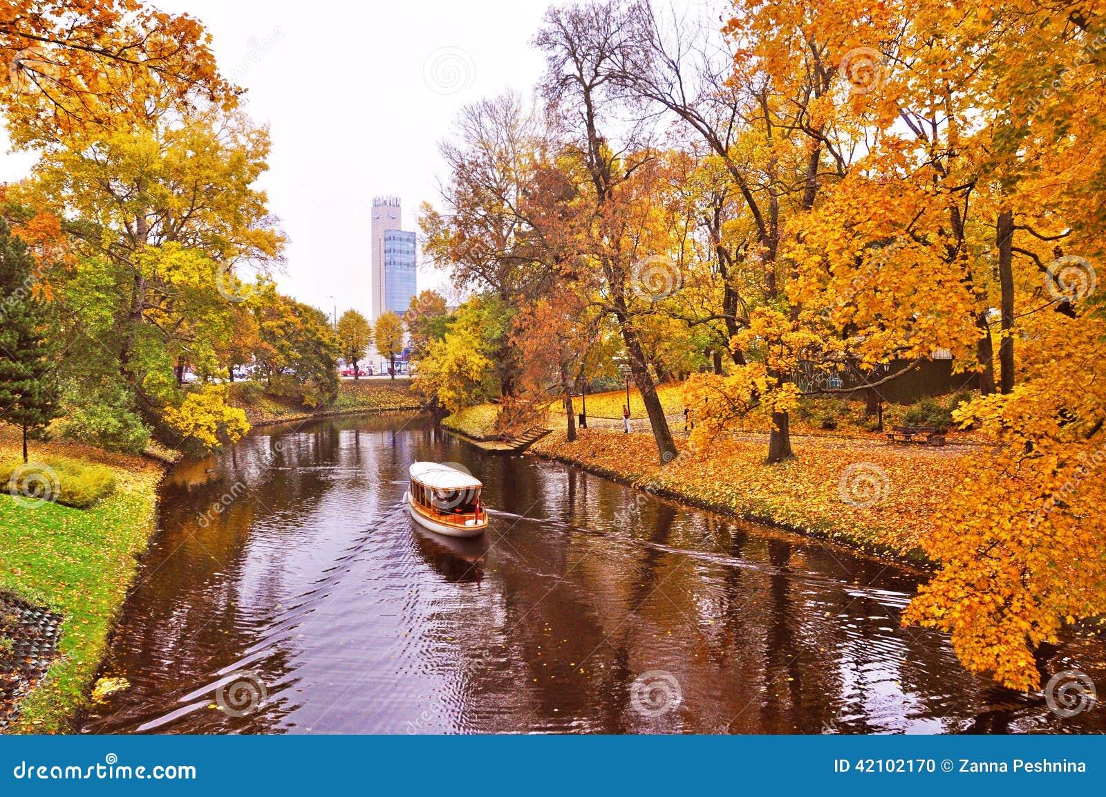 Żółty ulistnienie w jesień parku, Ryskim, Latvia