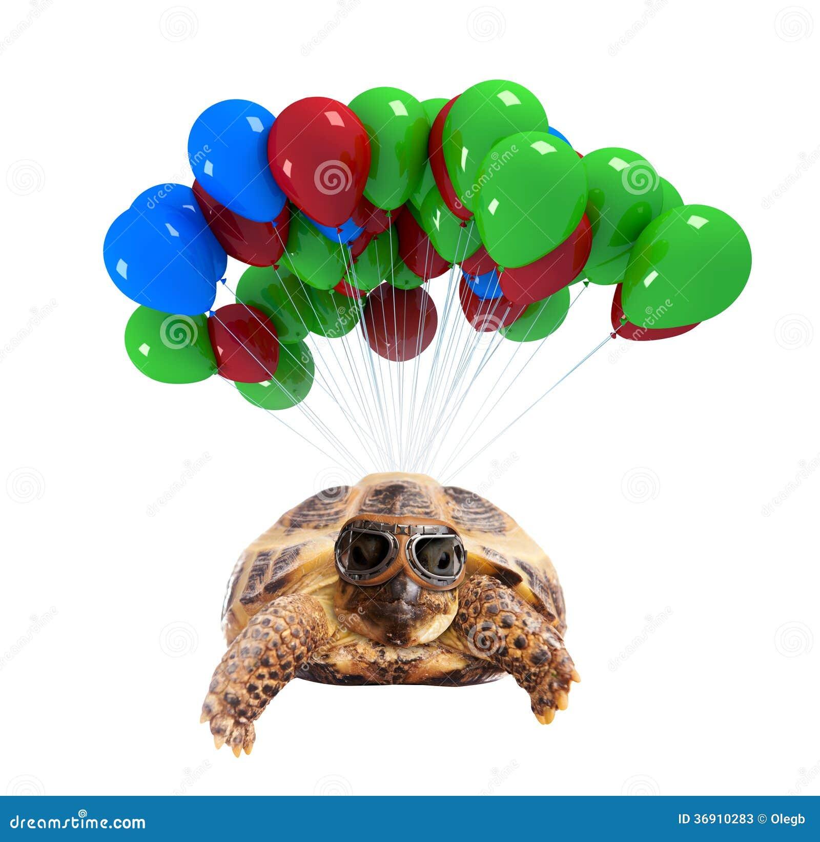 Żółwia latanie na balonach