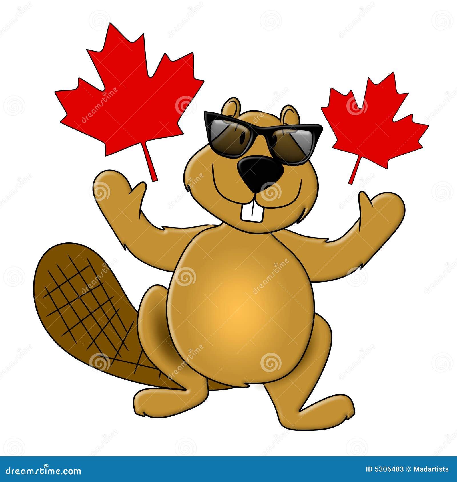 Óculos de sol desgastando do castor do dia de Canadá