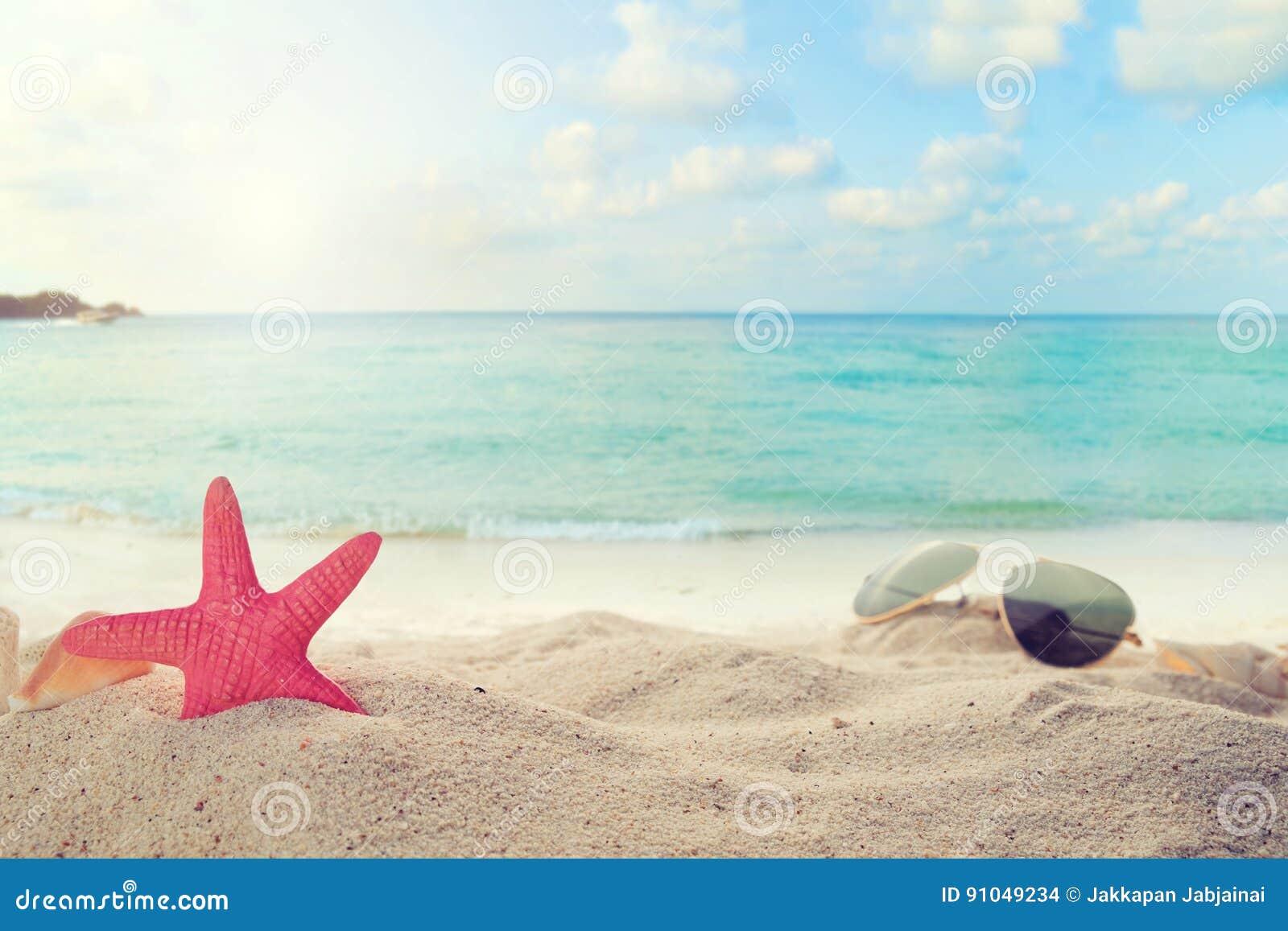 Óculos de sol em arenoso na praia do verão do beira-mar com estrela do mar, shell, coral no sandbar e fundo do mar do borrão