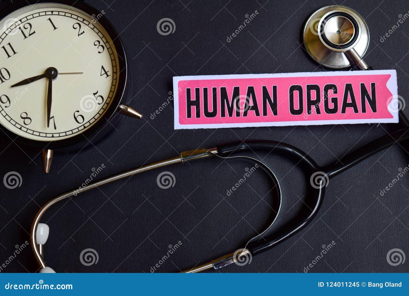 Órgano humano en el papel con la inspiración del concepto de la atención sanitaria despertador, estetoscopio negro