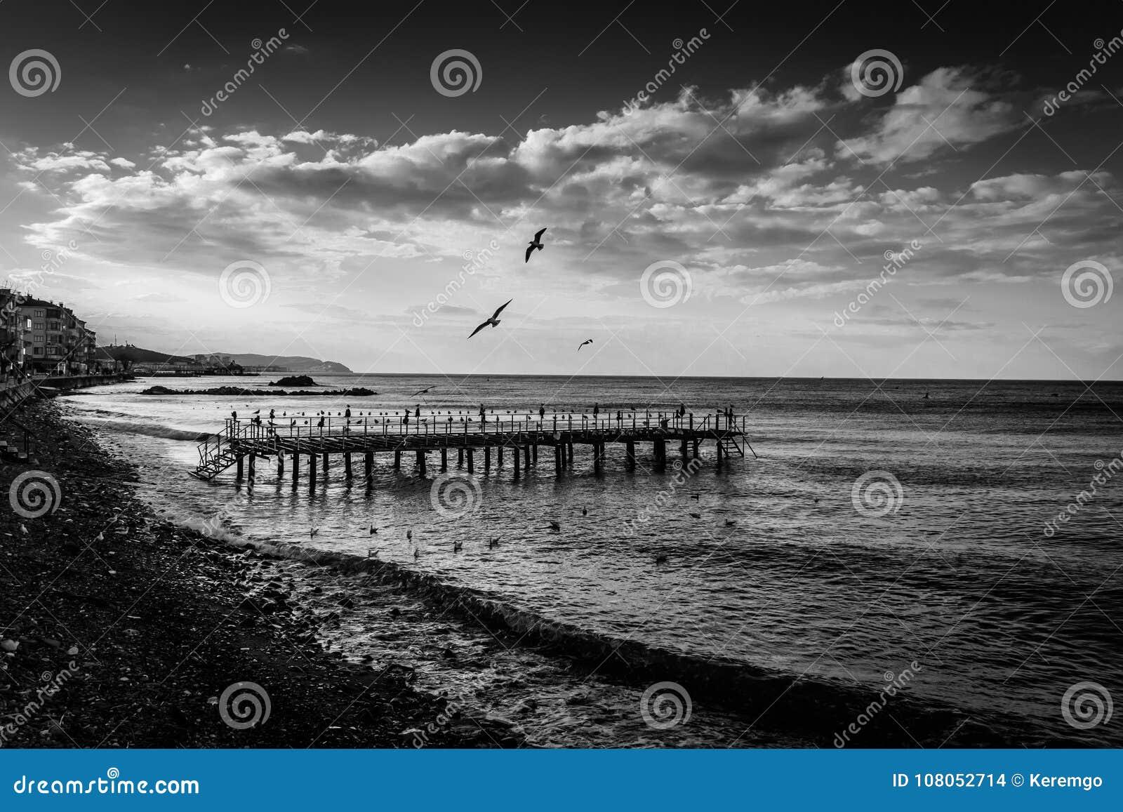 Ödelagd stålkonstruktion Pier On Seaside
