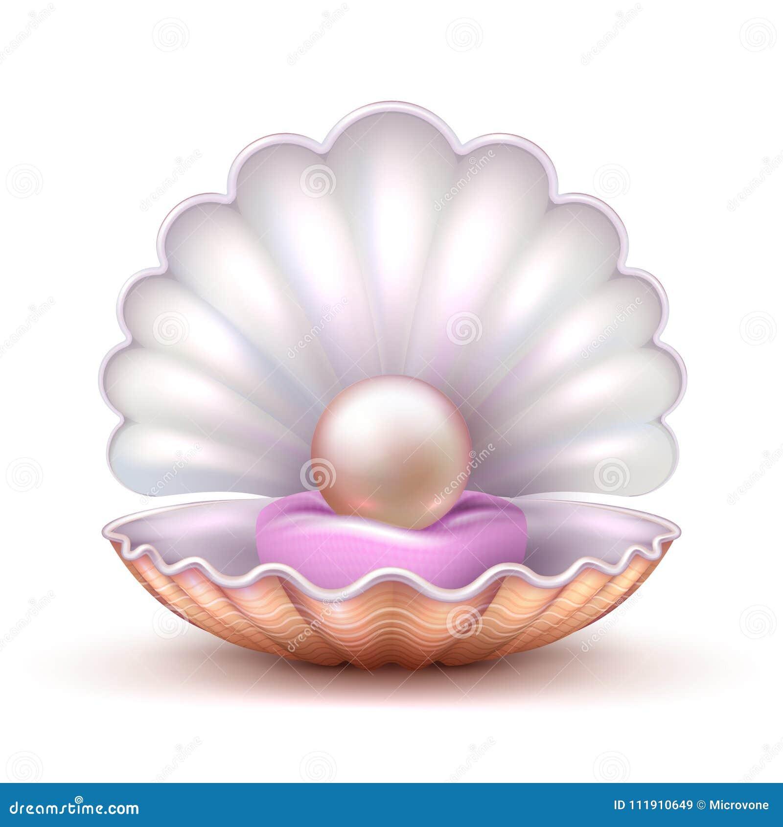Öffnen Sie Austernseeoberteil Mit Der Wertvollen Lokalisierten Perle ...