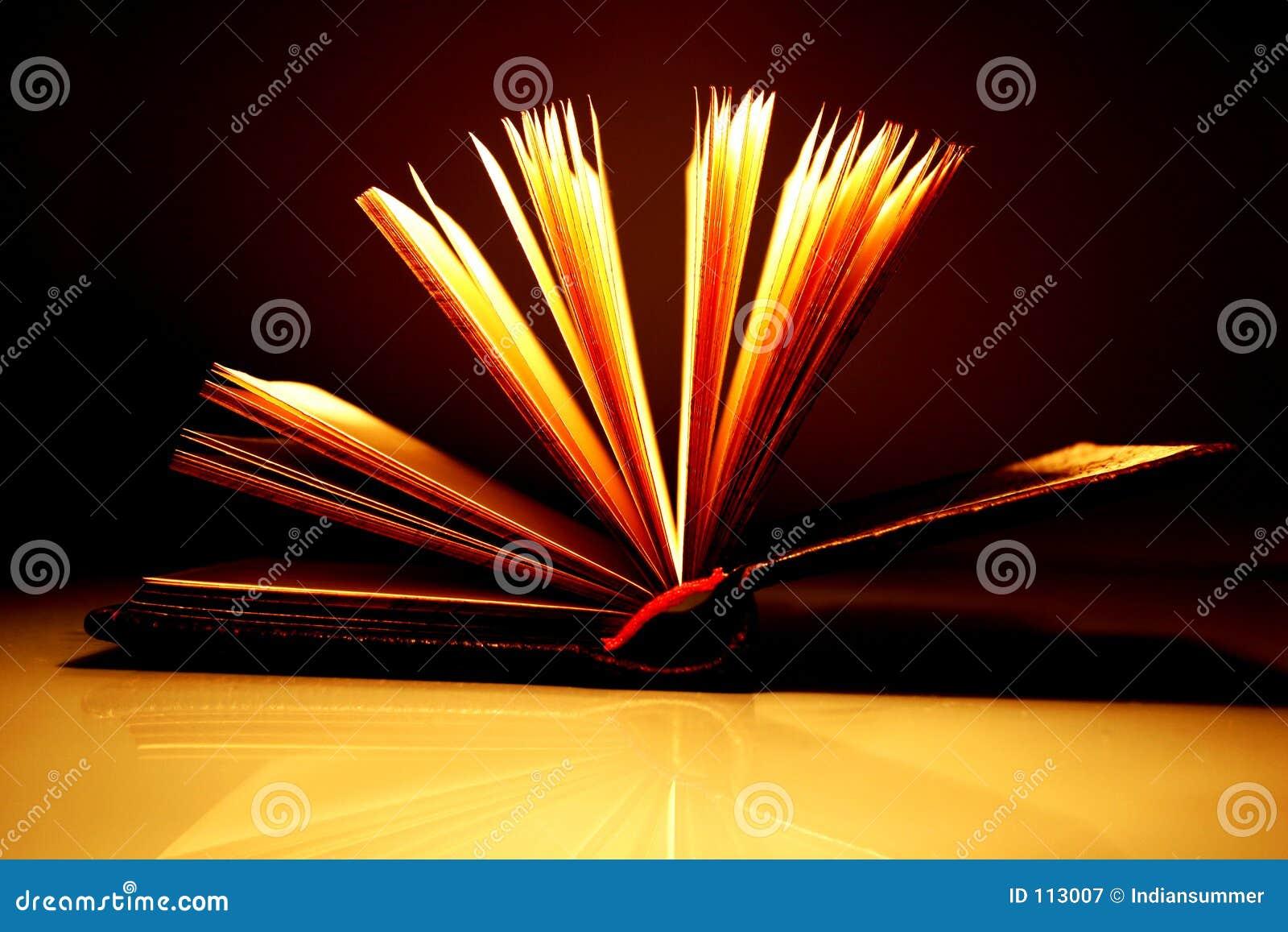 Öffnen Sie Buch [2]