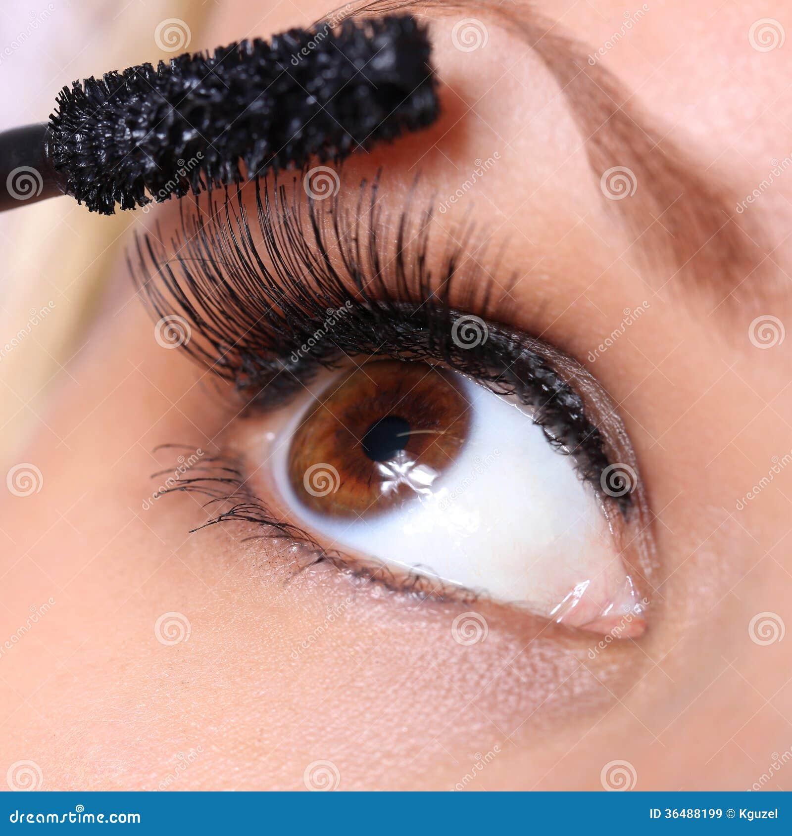 Ögon- och mascaraborste. härligt kvinnabruntöga