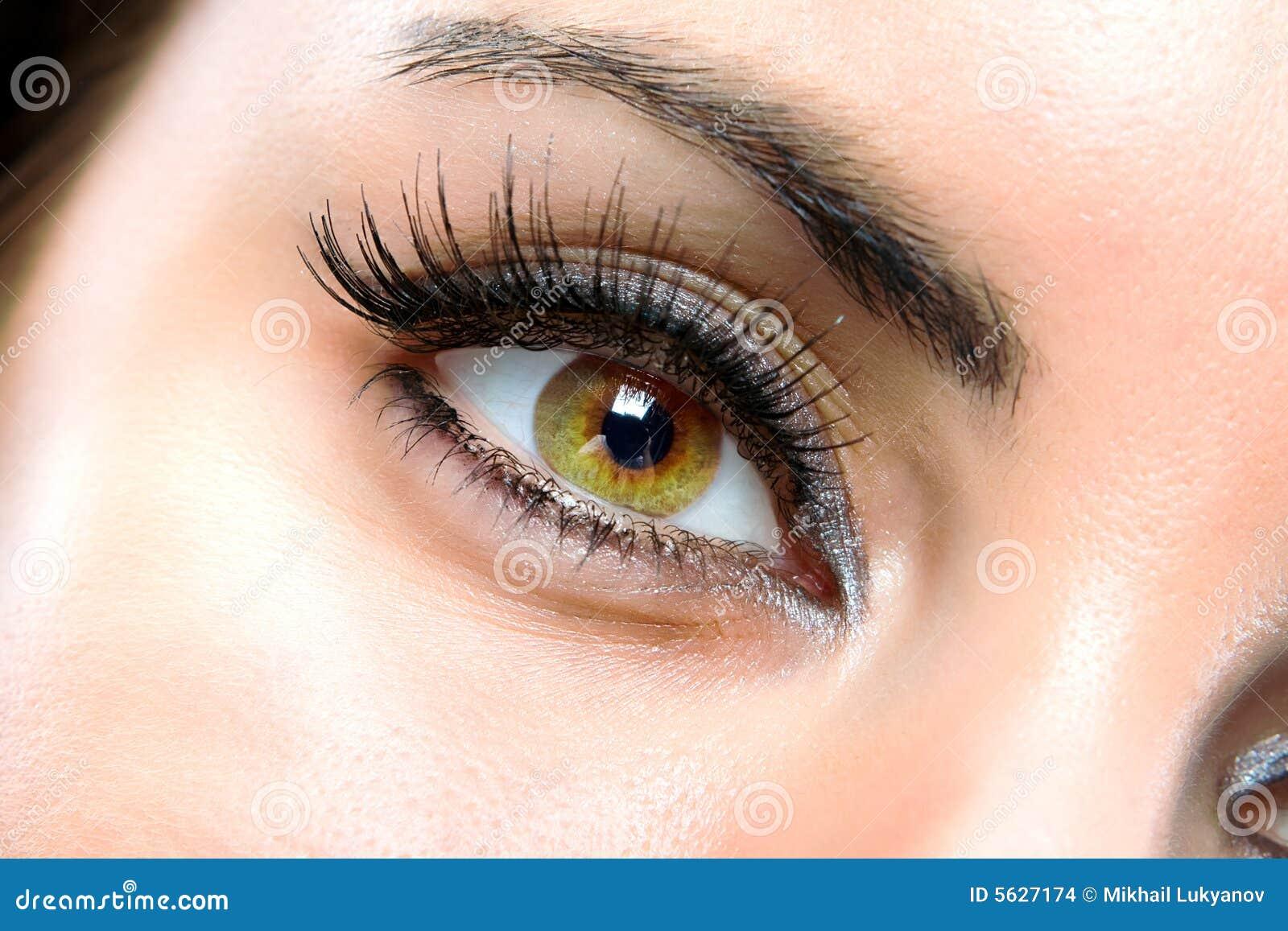 ögonkvinnligmakro