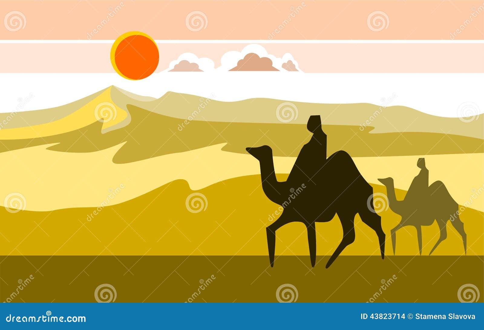 Öken med kamel