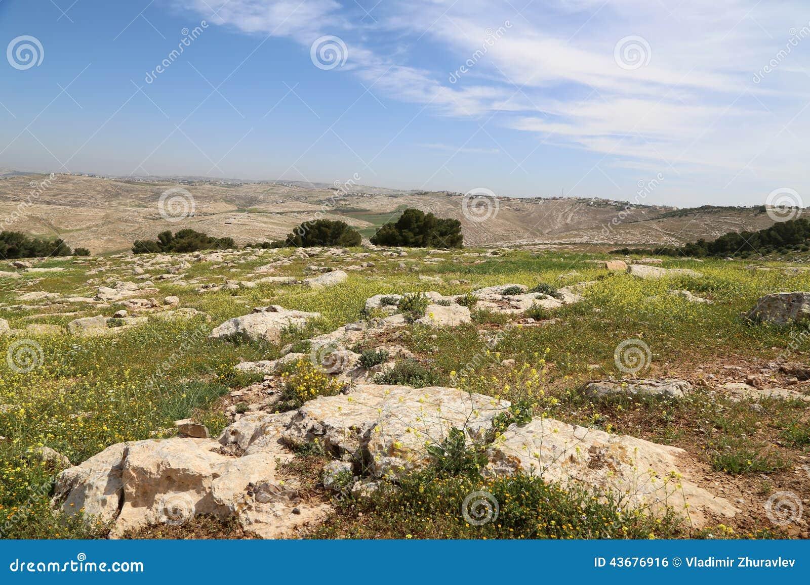 best sneakers 8a998 a437e ökenberglandskap Den Flyg Sikten Jordanien Mellanösten