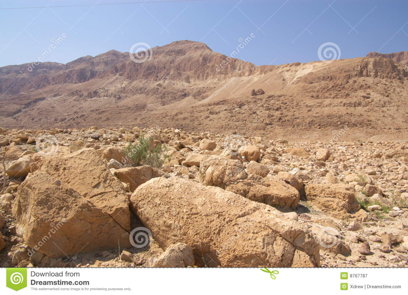 ökenisrael judea