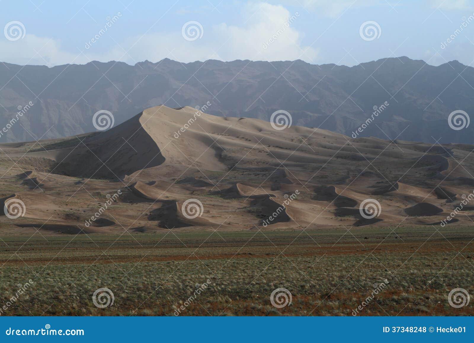 Öknen Gobi