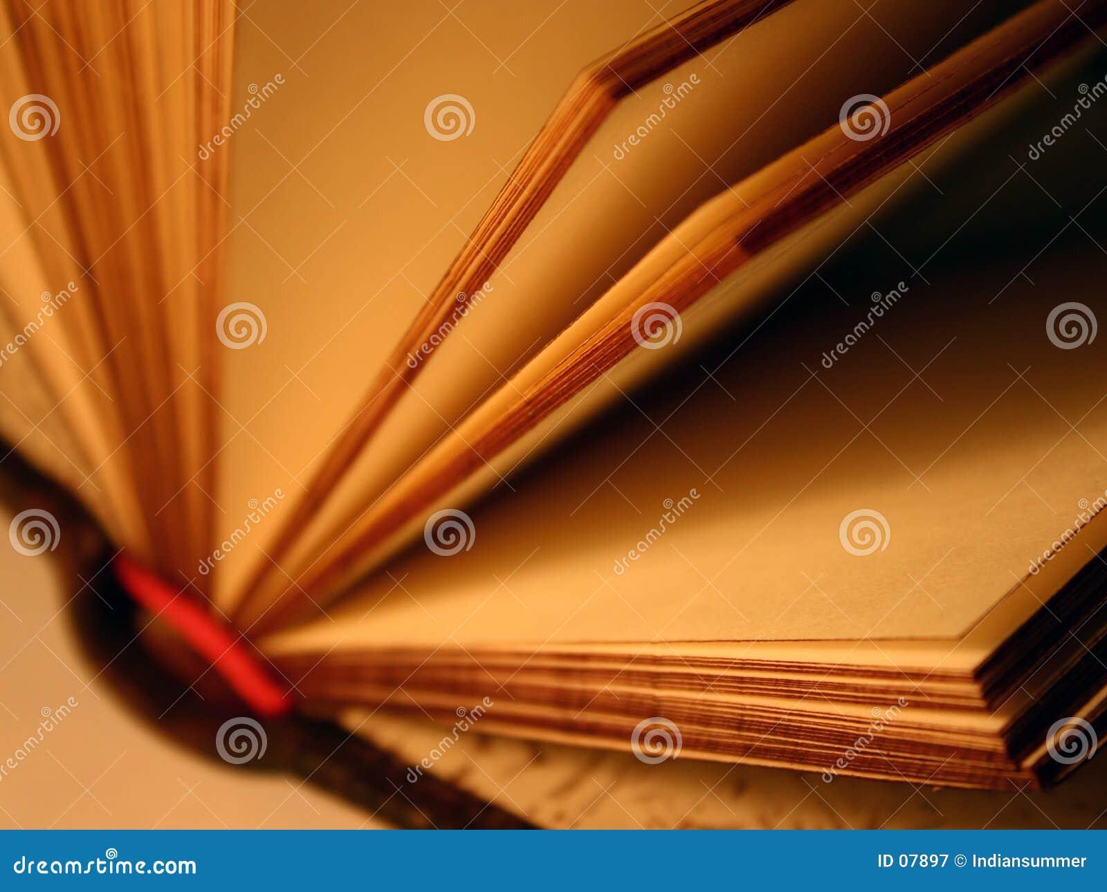 öppen souvenir för bok