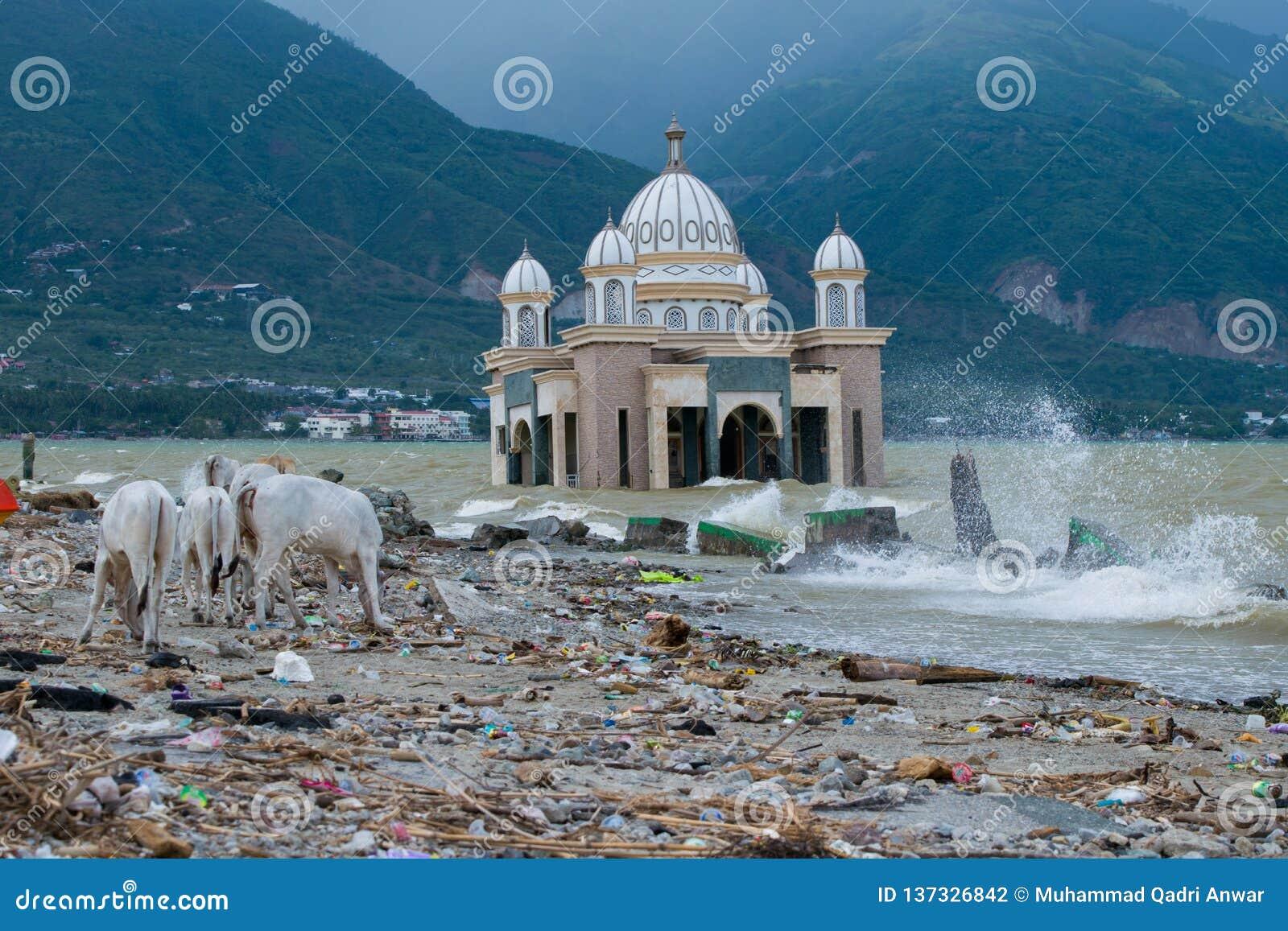 Örtliche Gegebenheit auf Talise-Strand nach Tsunamischlag auf Palu, Indonesien am 28. September 2018