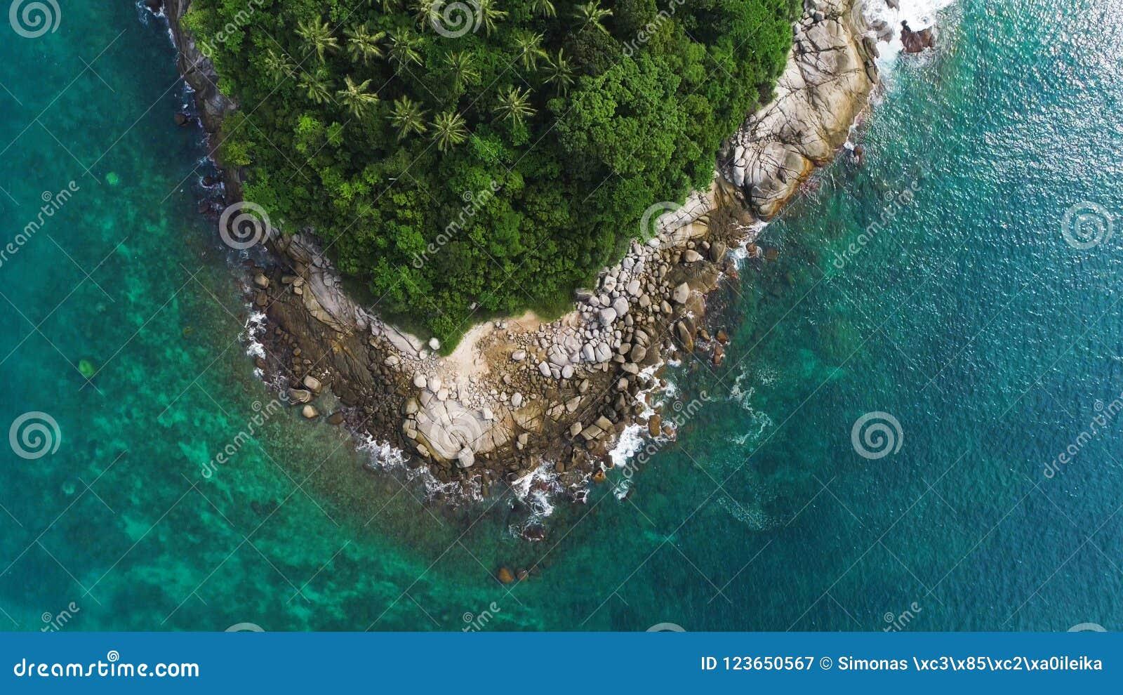 Över huvudet surrskott av blast av palmträd och turkoshavsvatten i den Ko Pu-ön i Phuket, Thailand Abstrakt textur, ställe för