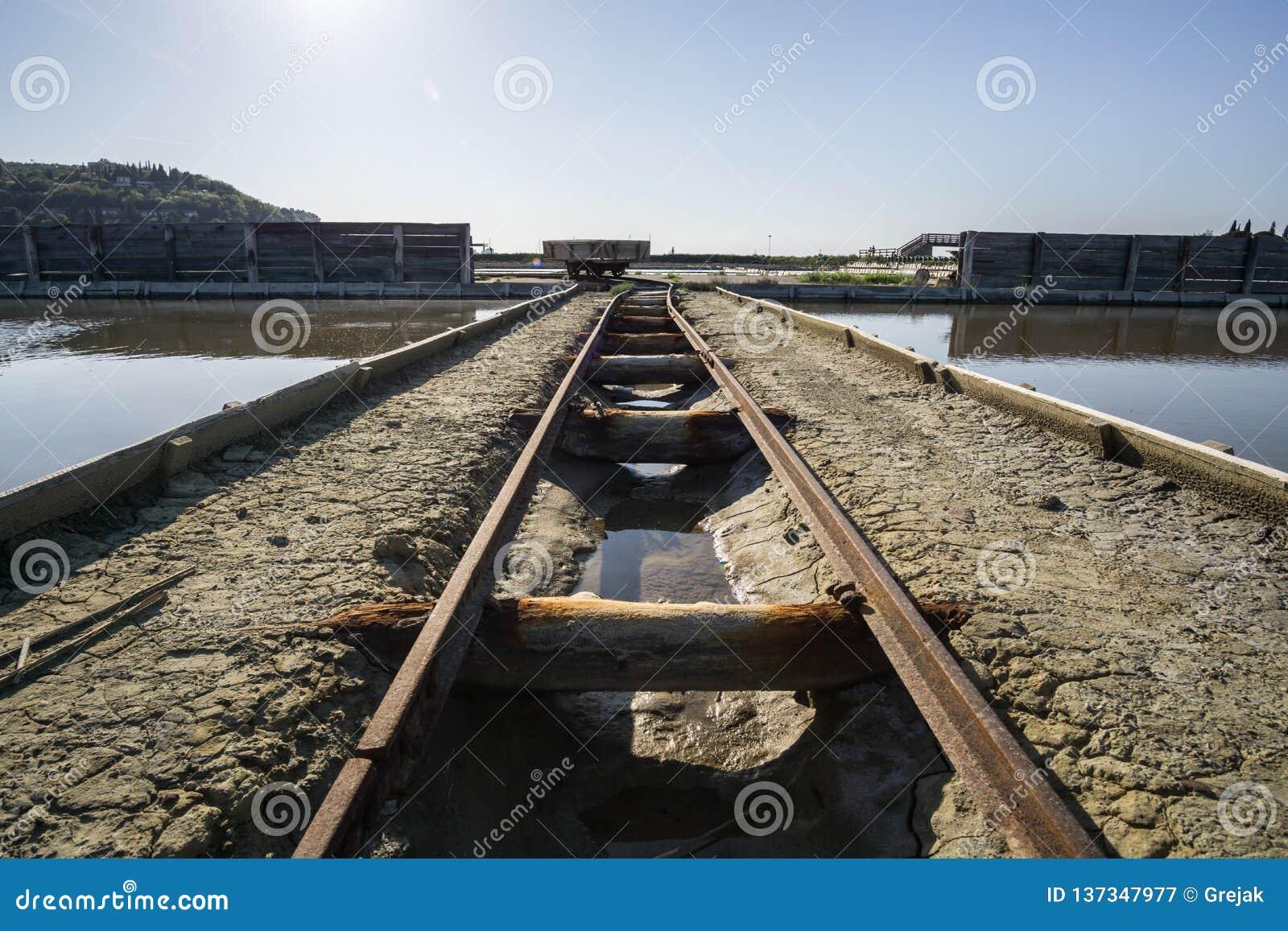 Övergett rostigt bryter järnvägen bredvid floden