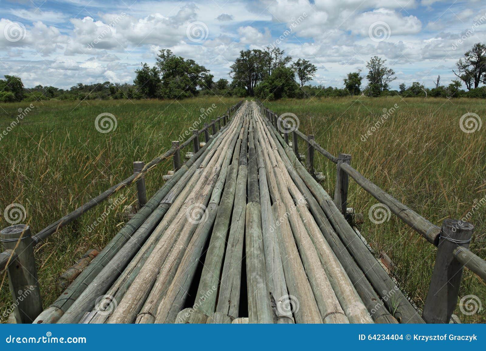 Überbrücken Sie in Moremi 2