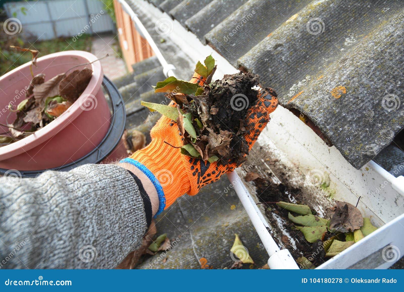 Überdachen Sie Gossen-Reinigung von den Blättern im Herbst mit der Hand Dach-Gossen-Reinigungs-Tipps