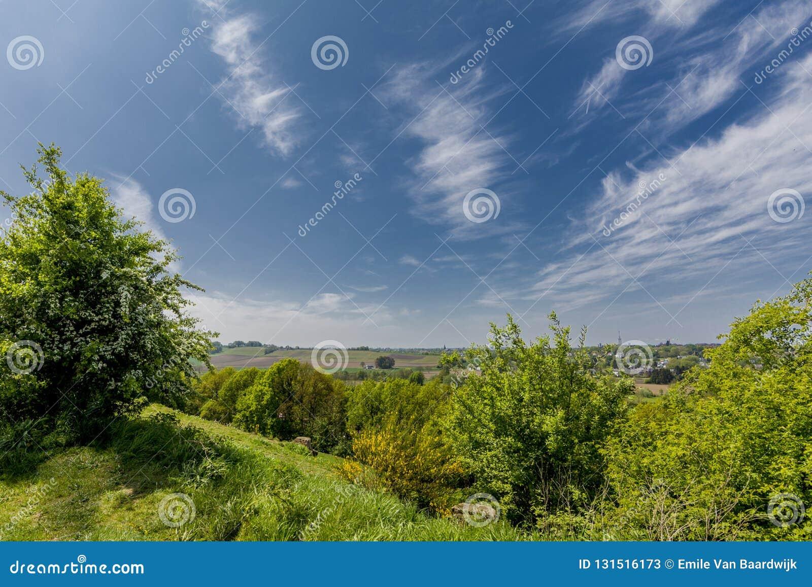 Überraschendes Bild der Natur an einem wunderbaren sonnigen Tag