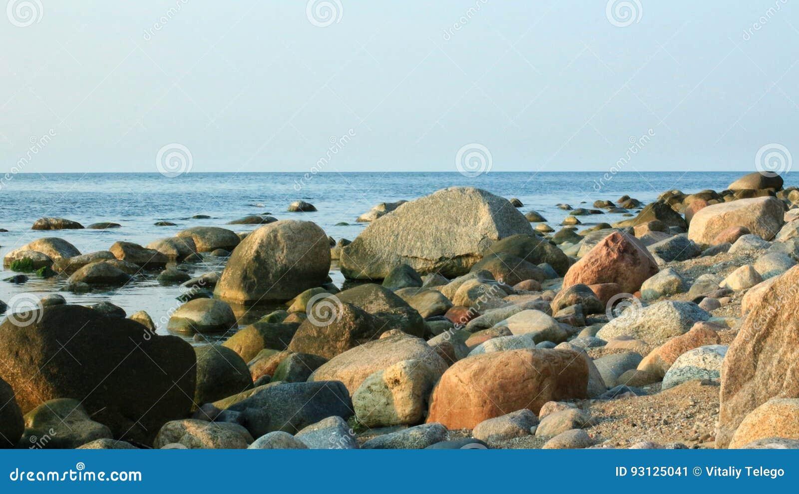 Überwucherter Stein