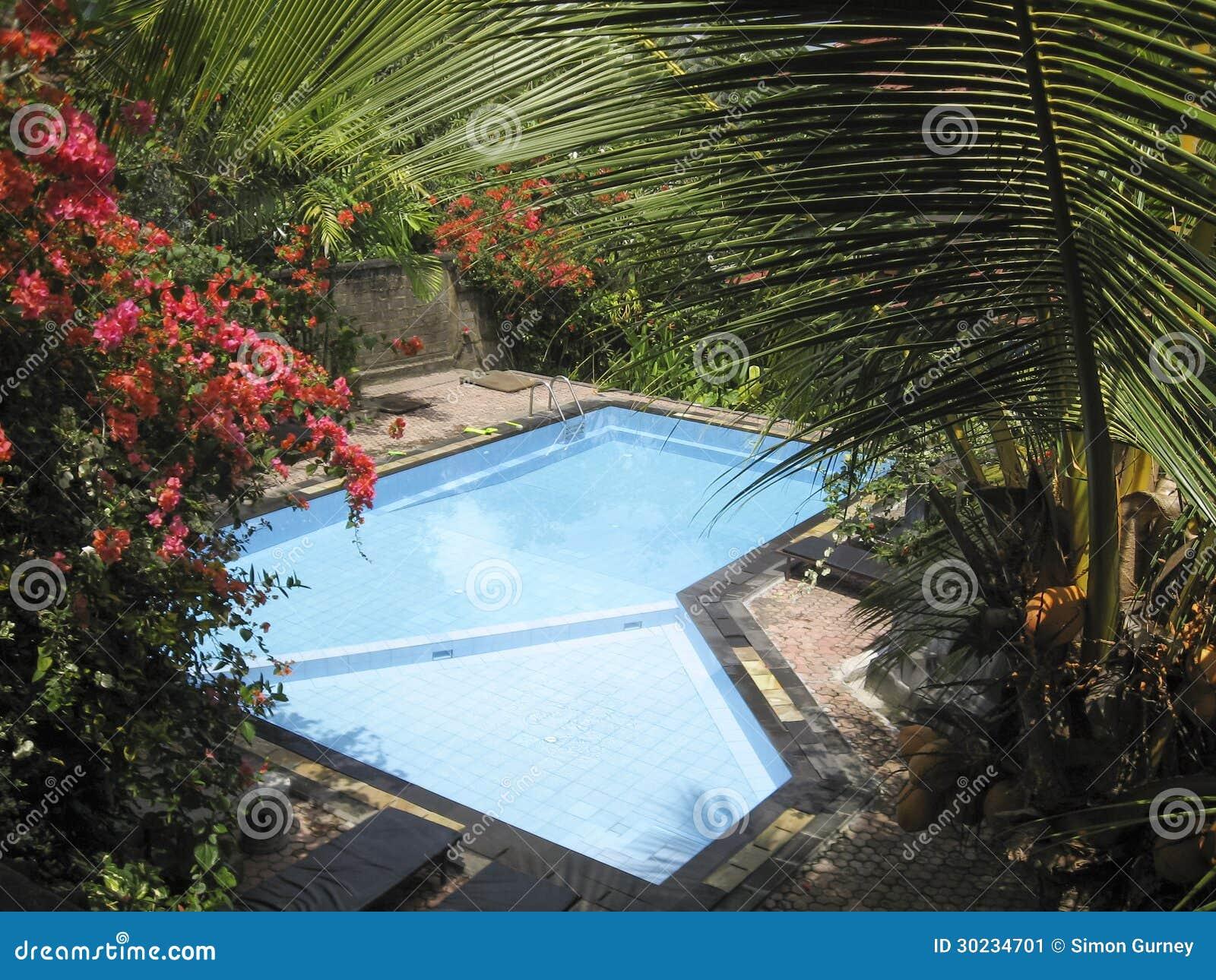 Tropischer GartenSwimmingpool Bali
