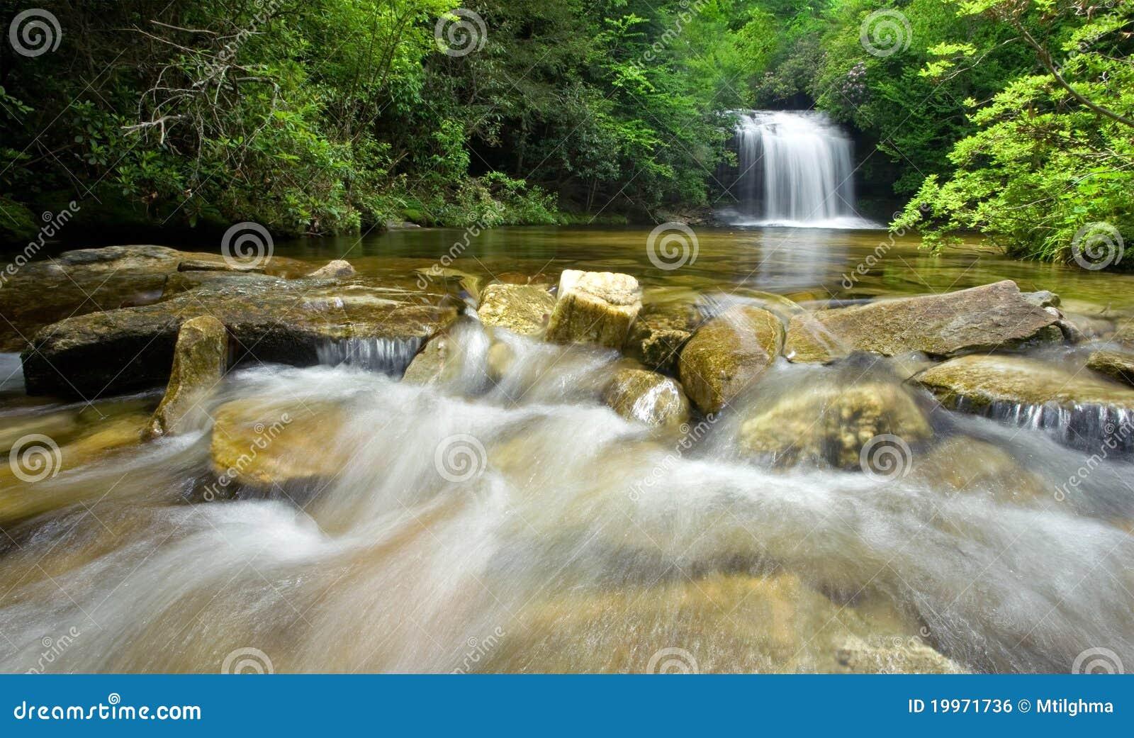 Üppiger Regen-Waldwasserfall