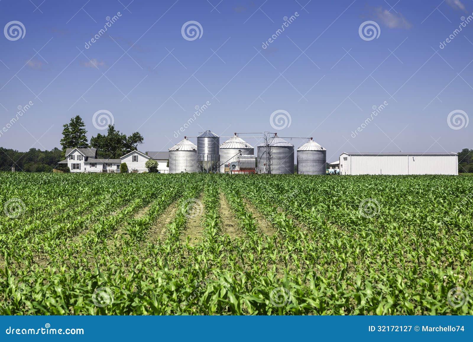 美国乡下农场