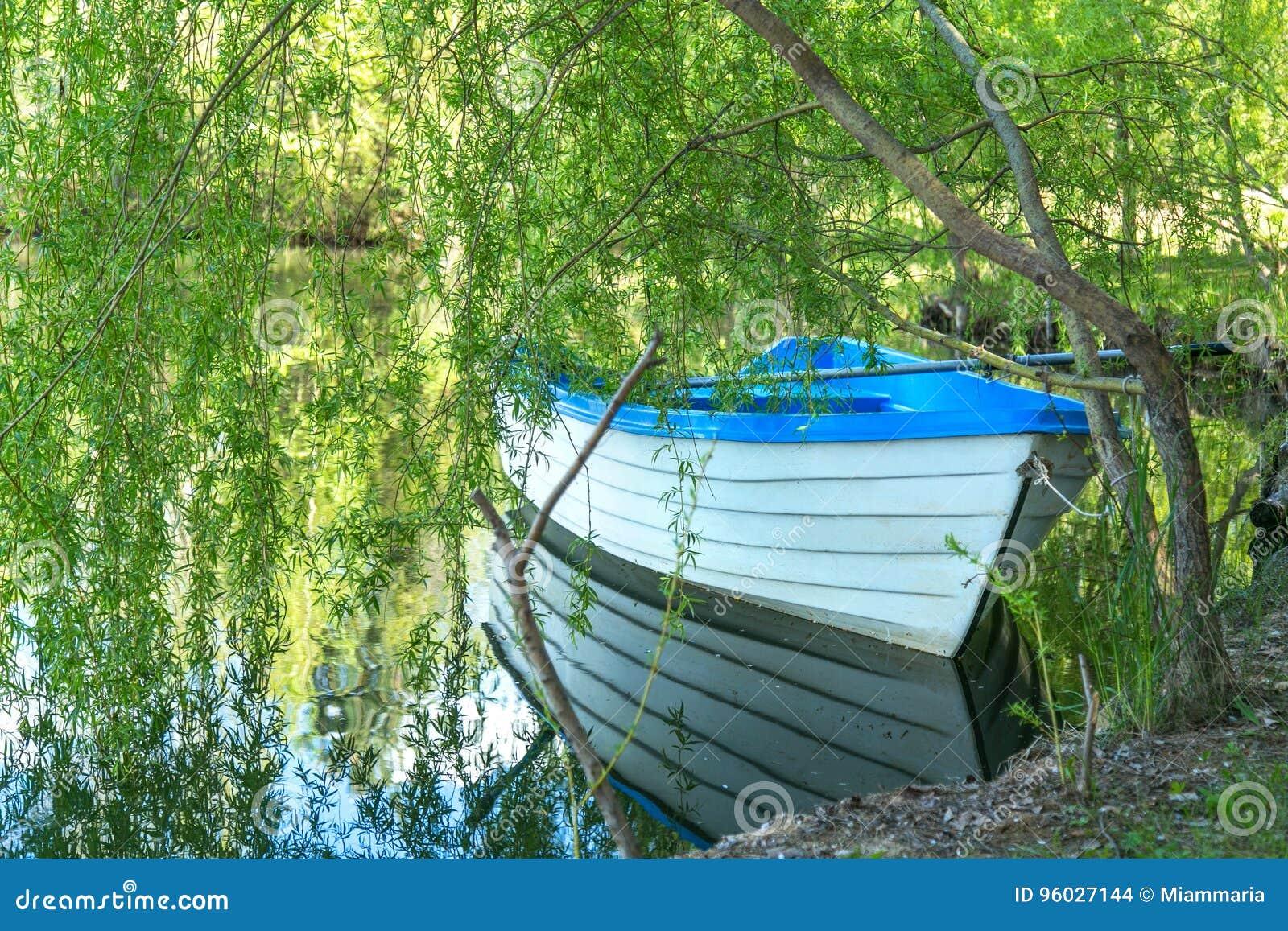 Łódź na jeziorze pod wierzbowym drzewem