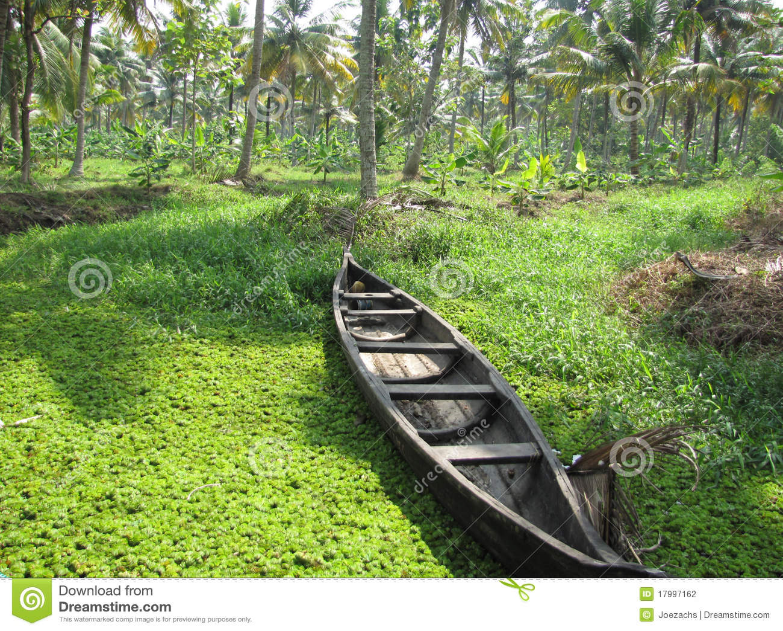 łódkowata rzeka