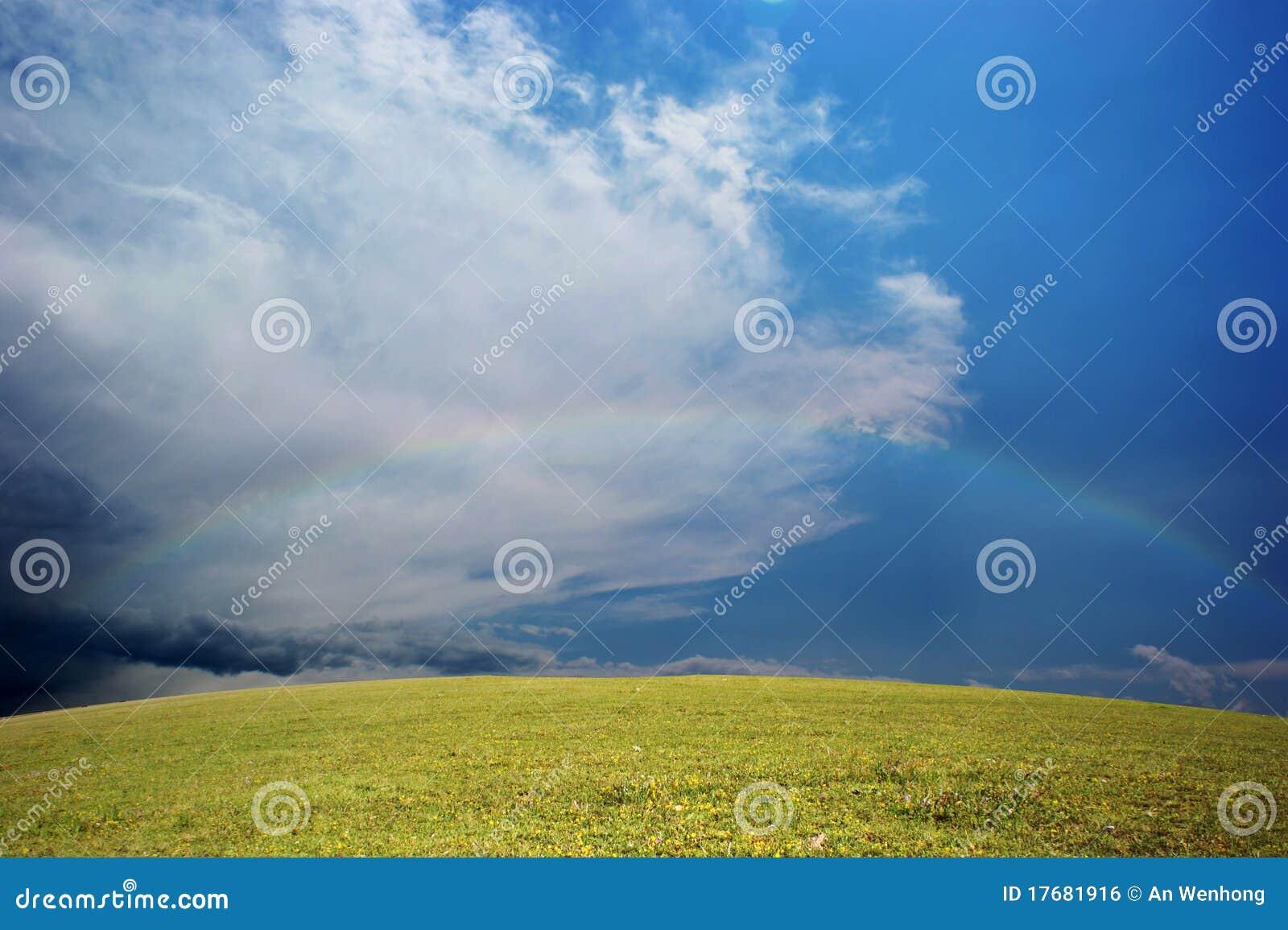 łąki tęcza
