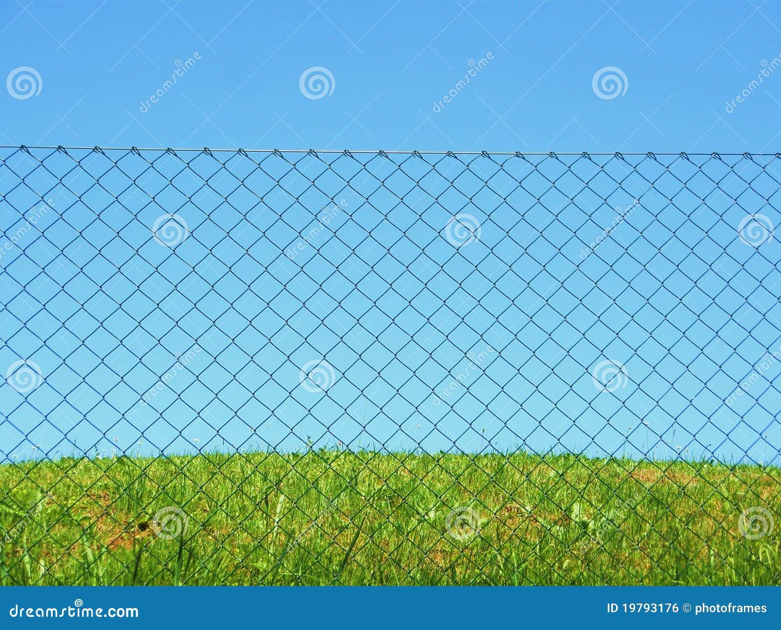 łańcuszkowy płotowy trawy połączenia niebo