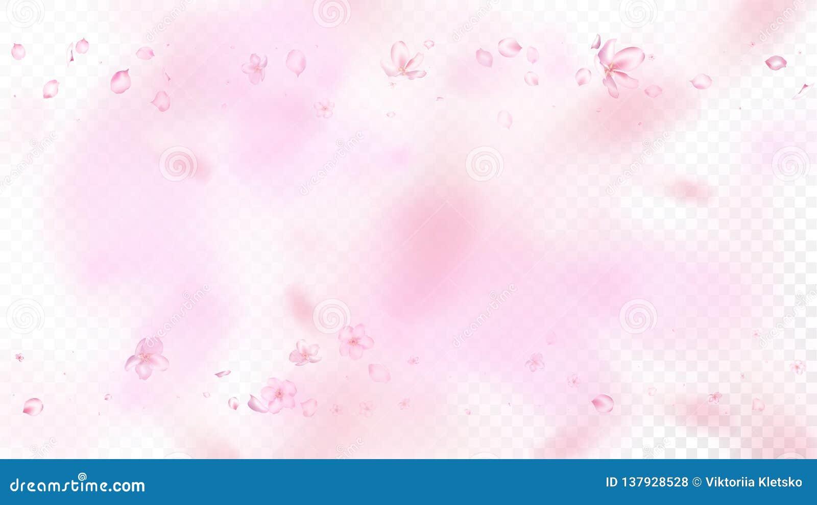 Ładnego Sakura okwitnięcia Odosobniony wektor Magia Spada 3d płatki Poślubia teksturę Japończyk Zamazujący Kwitnie ilustrację val