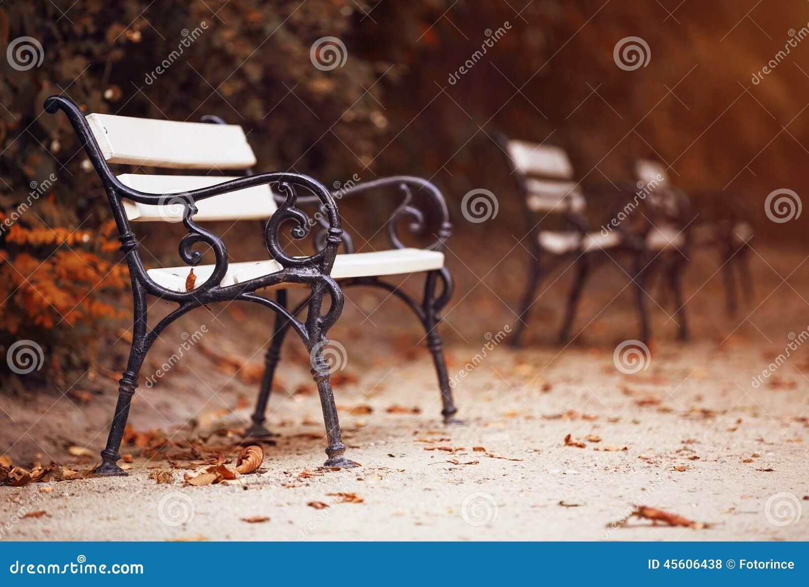 Ławki w jesień parku
