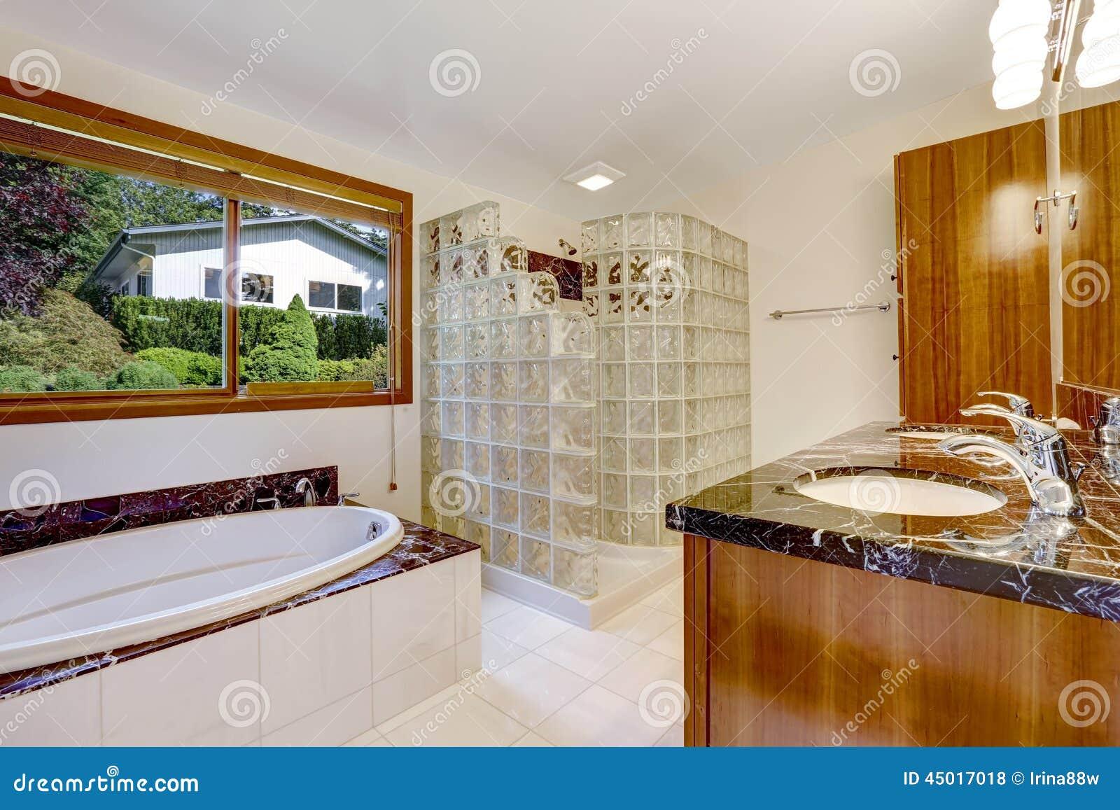 łazienka Z Szklanego Bloku Ekranizującą Prysznic Zdjęcie