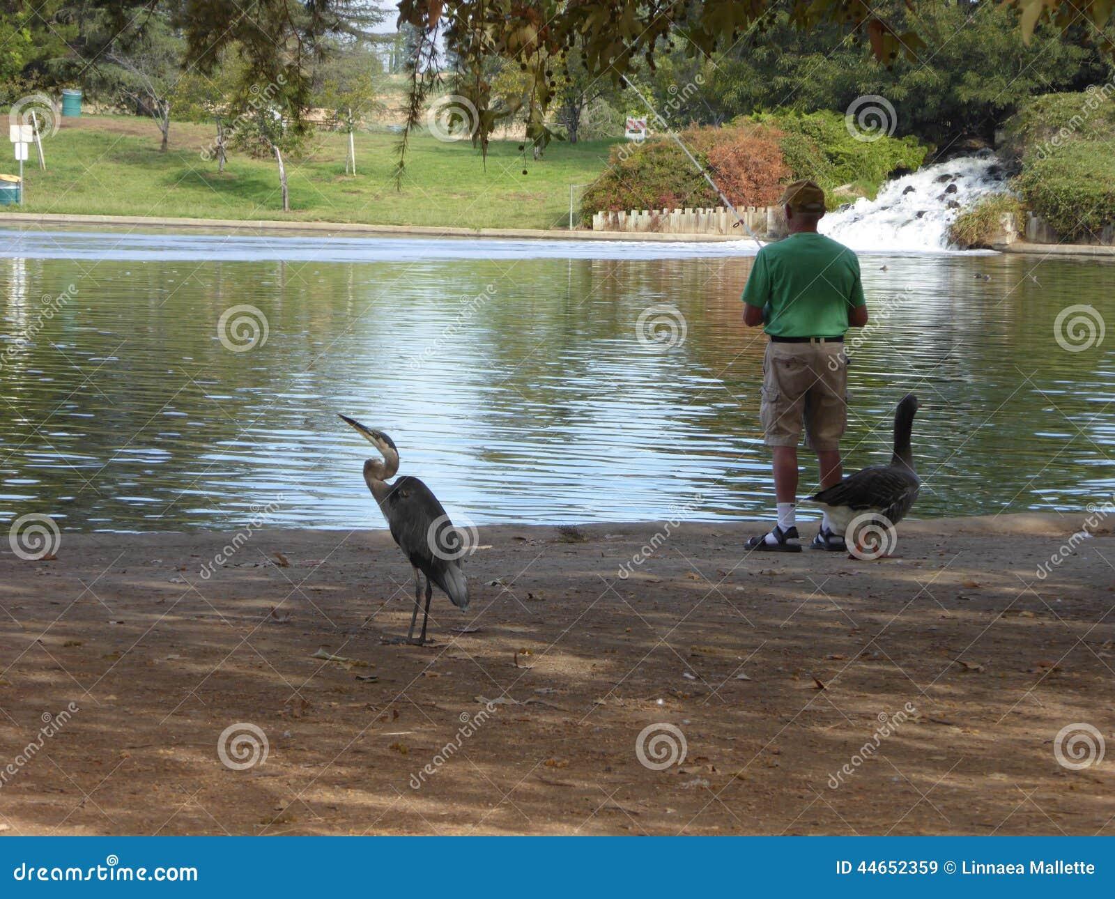 Łowić przy Jeziornym balboa w Anthony C Bieilenson park 80 akrów wody rekreacyjna łatwość