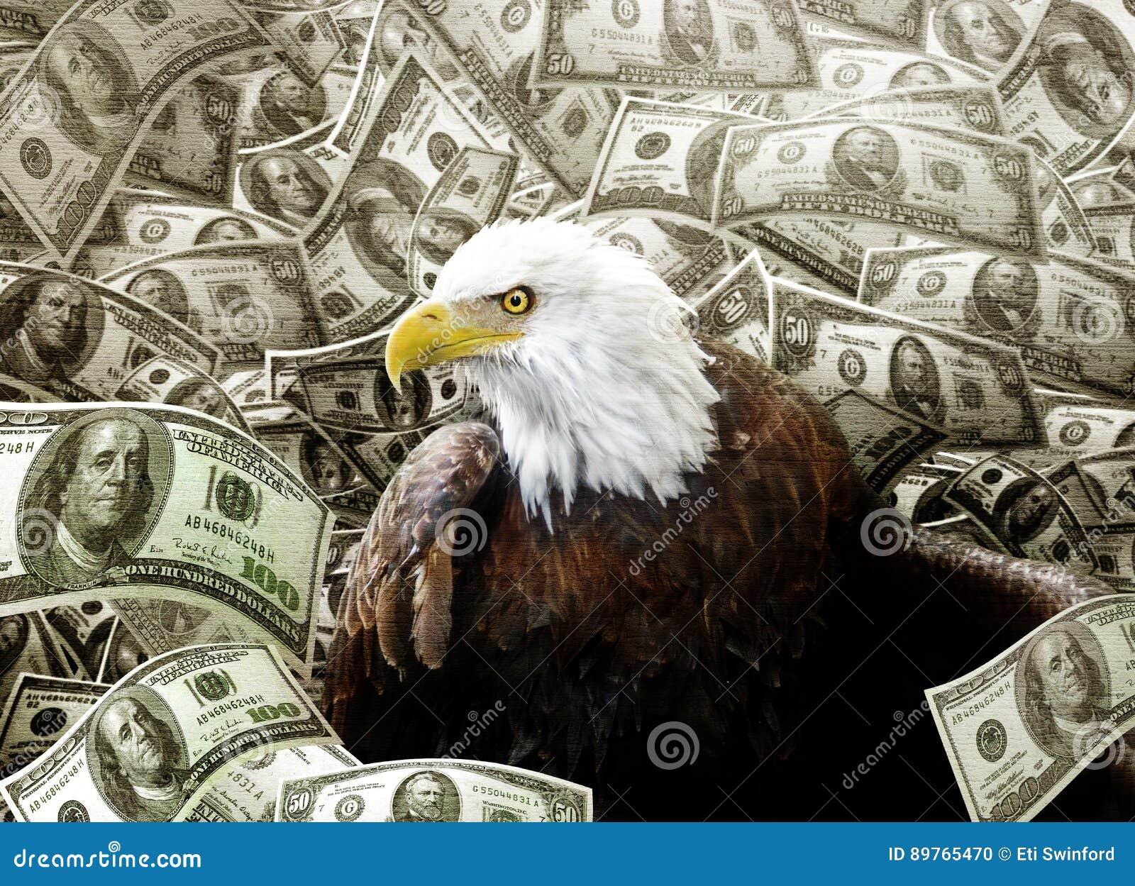Łysy Eagle w pieniądze