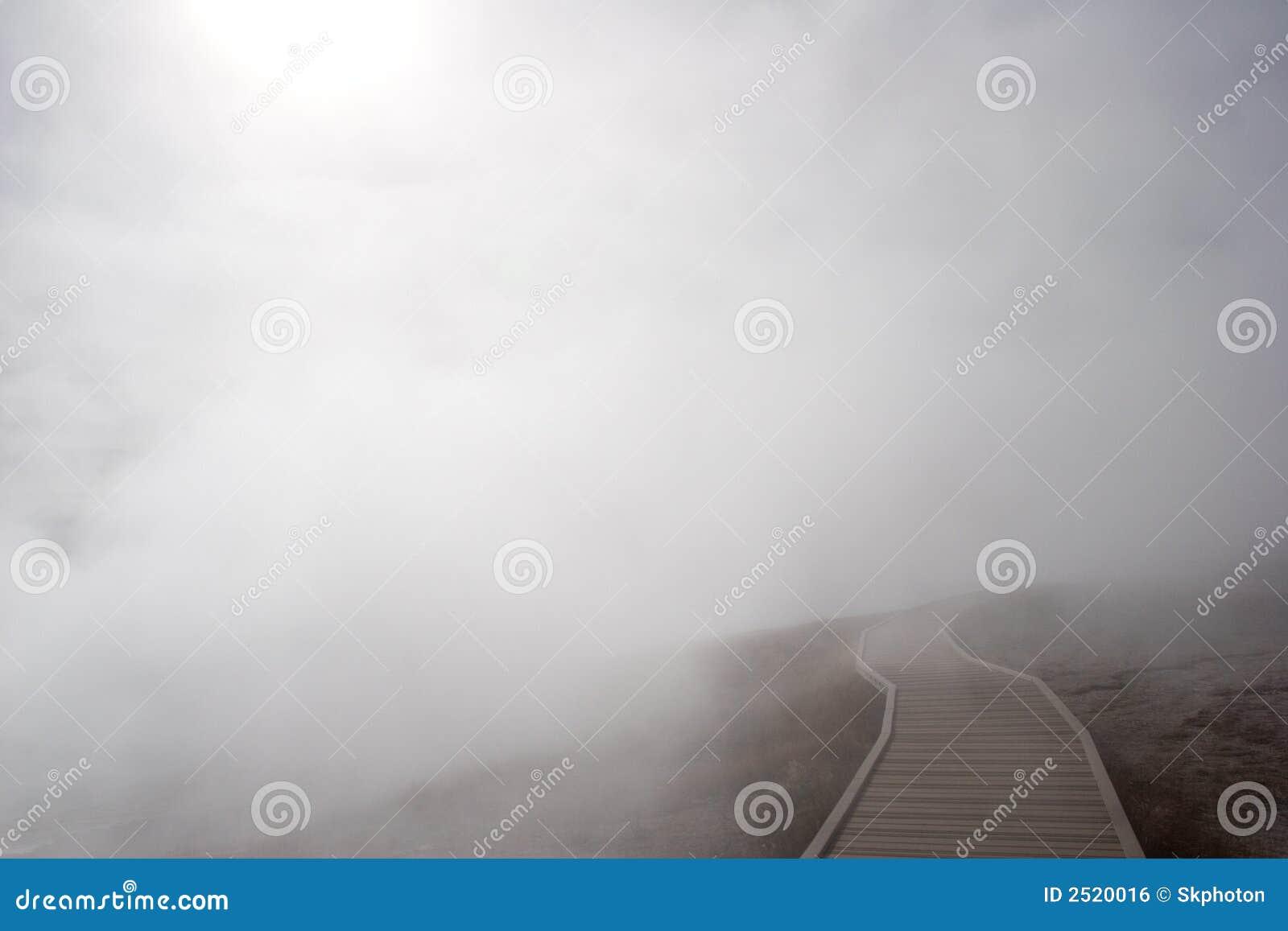 ścieżka mgłowa