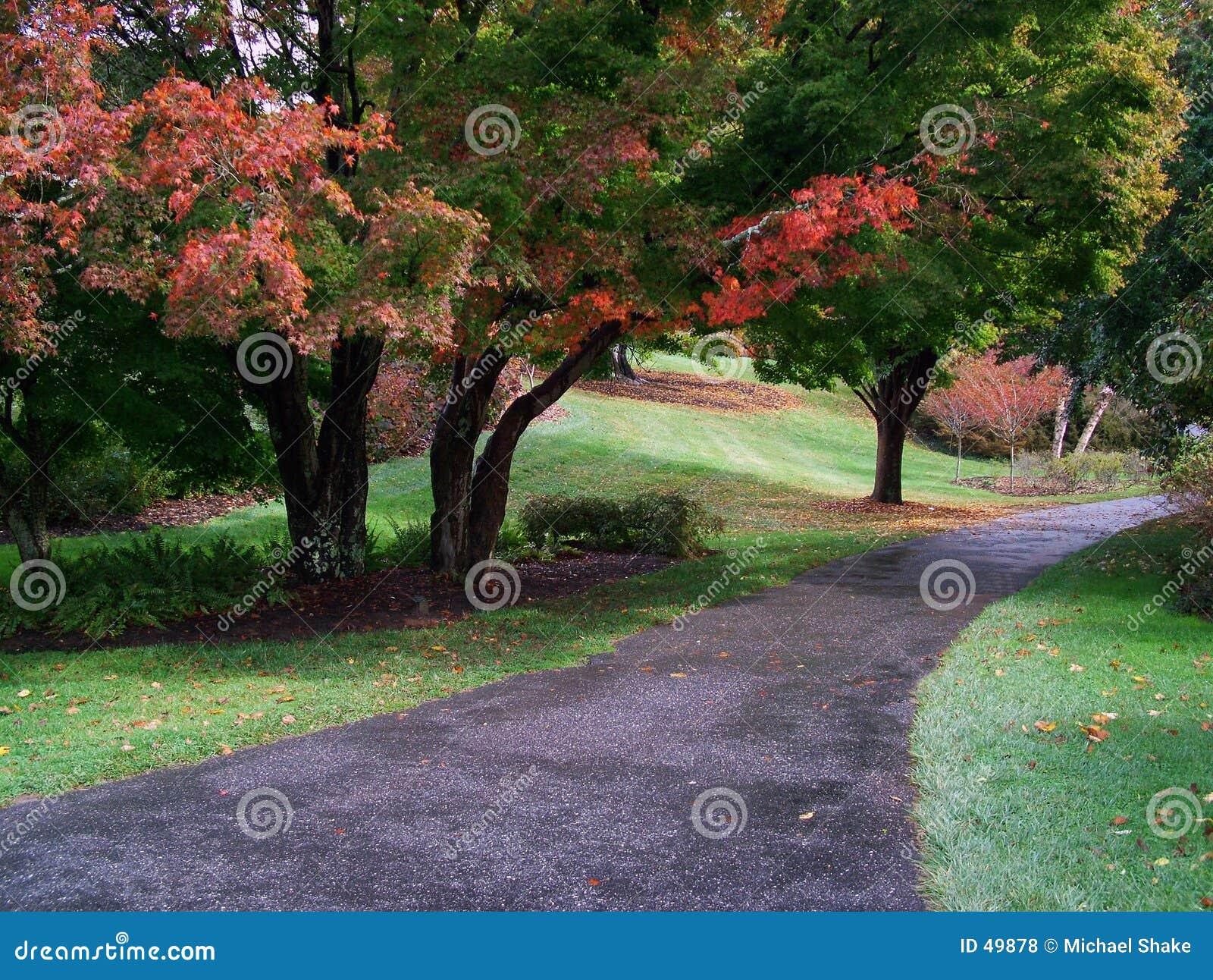 ścieżka pastelowa