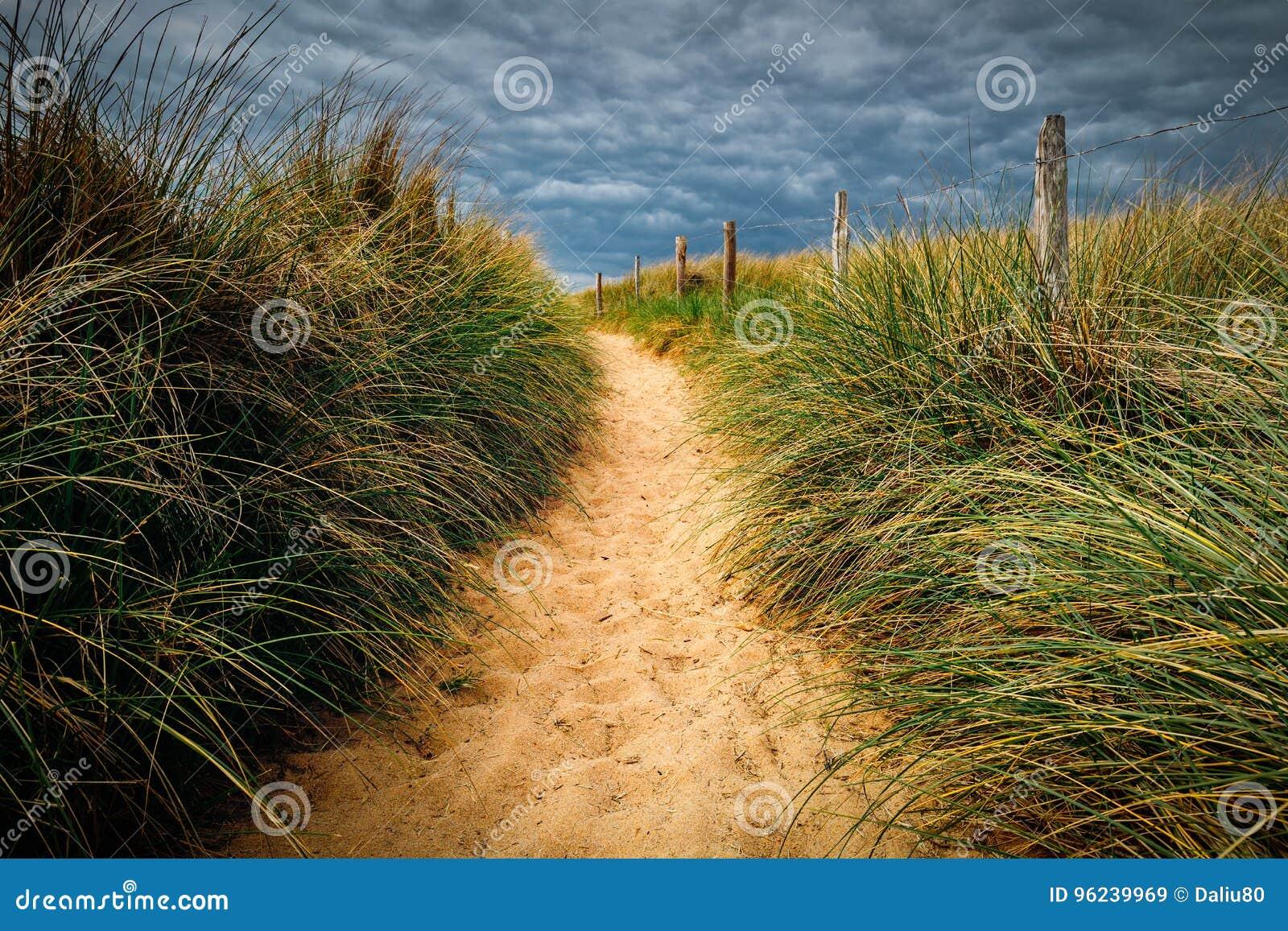 Ścieżka plaża, Quiberon krajobraz, Bretagne, Fr (Brittany)