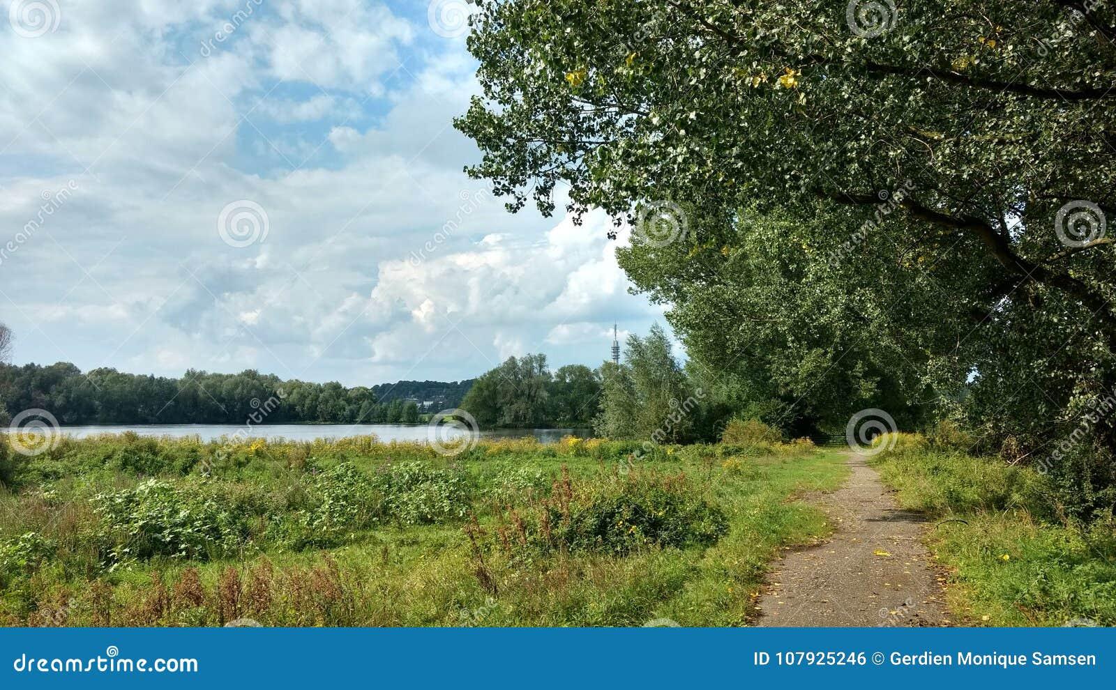 Ścieżka Przez natury