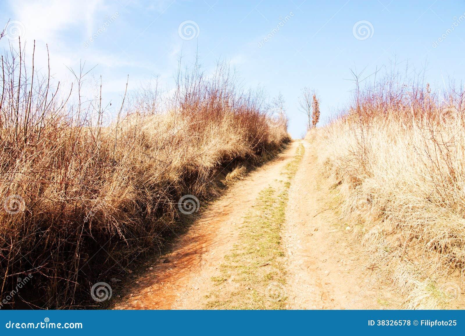 Ścieżka przez pola