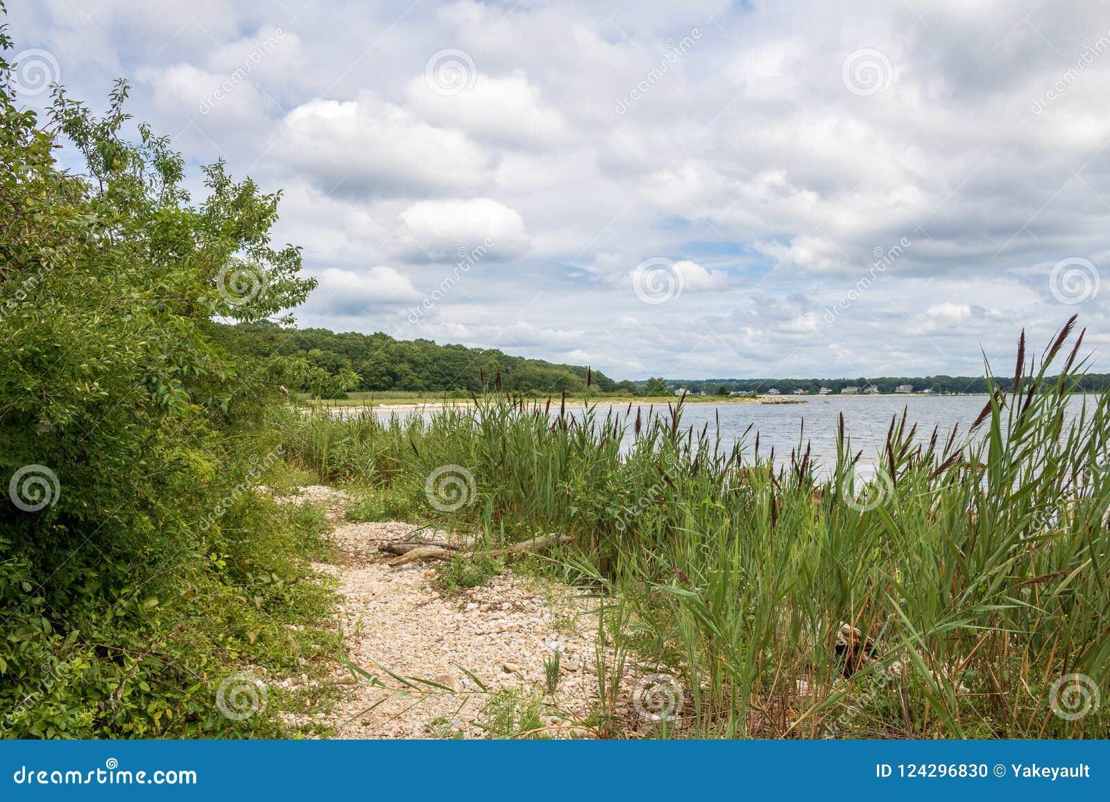 Ścieżka wzdłuż plaży