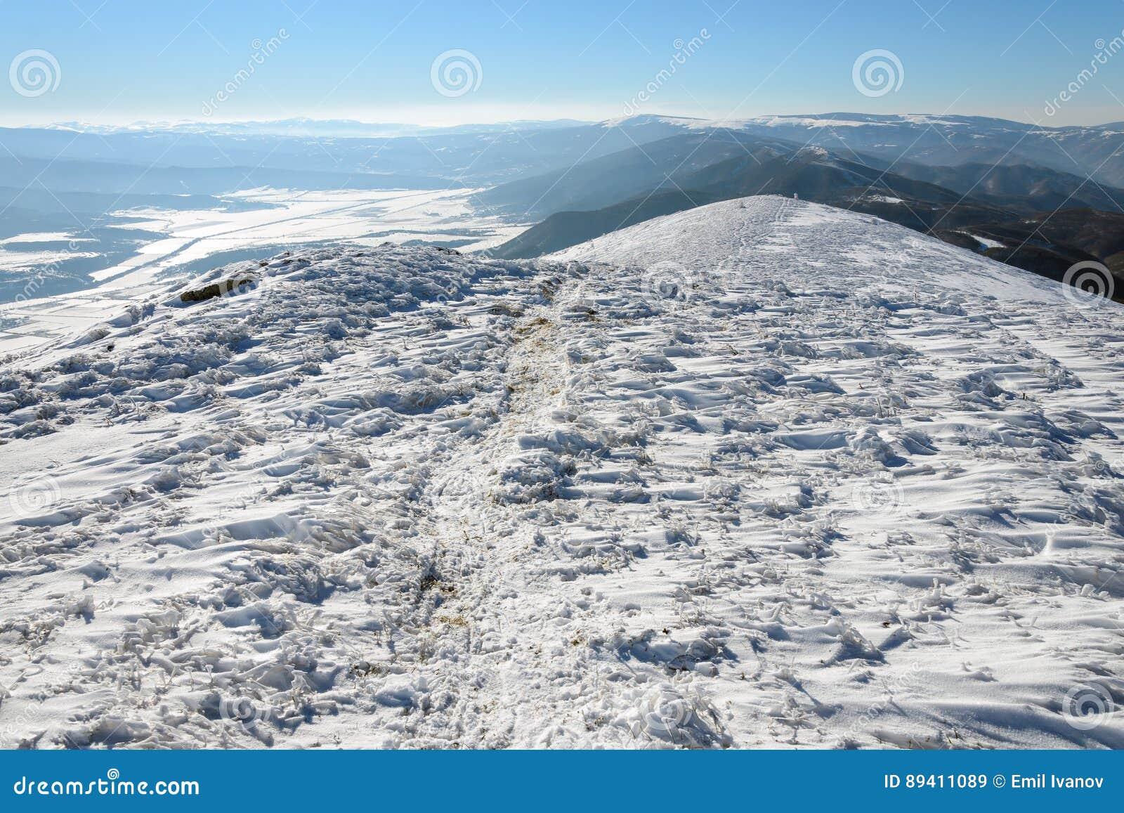 Ślad w śniegu