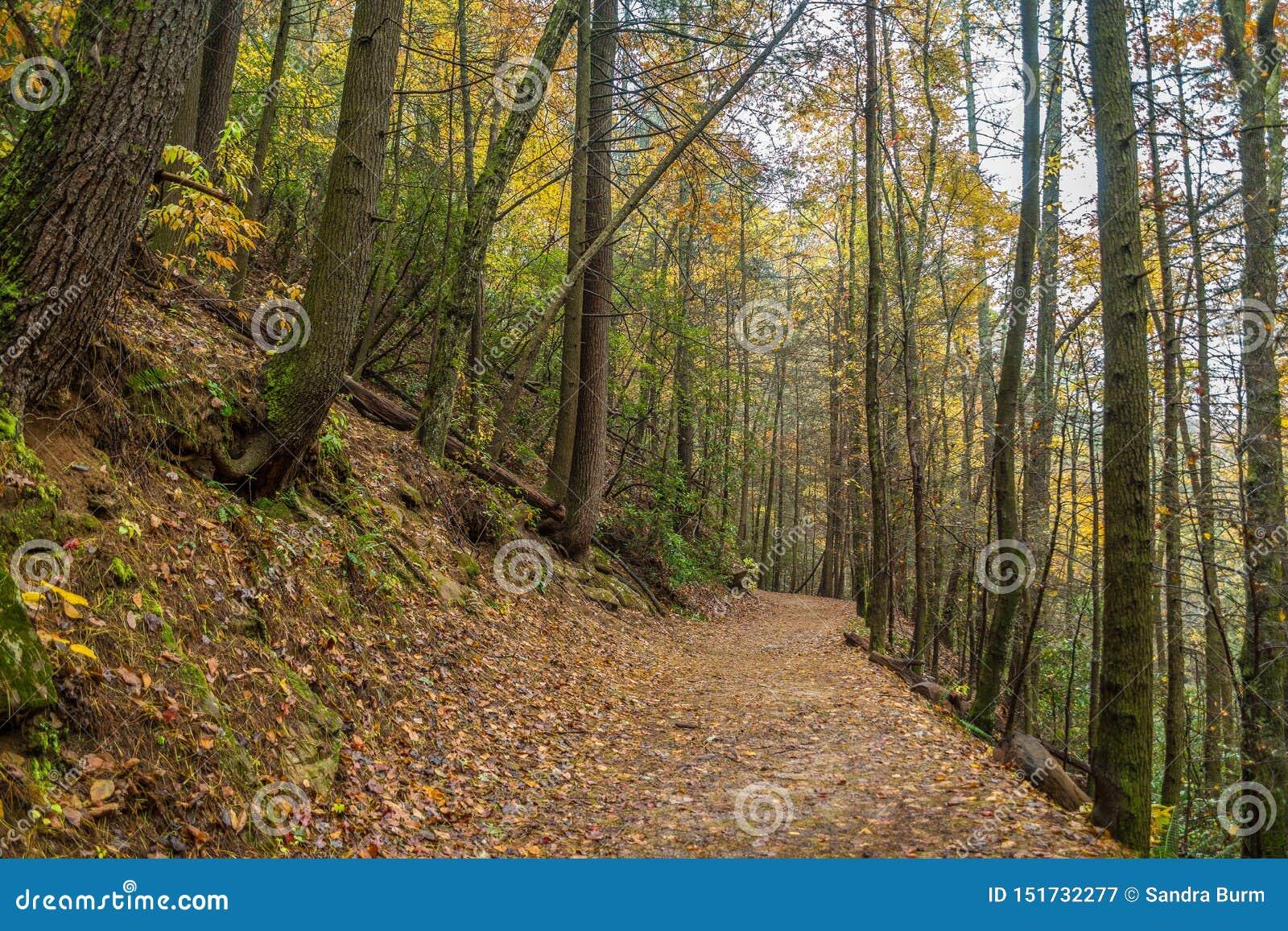 Ślad w górach w jesieni