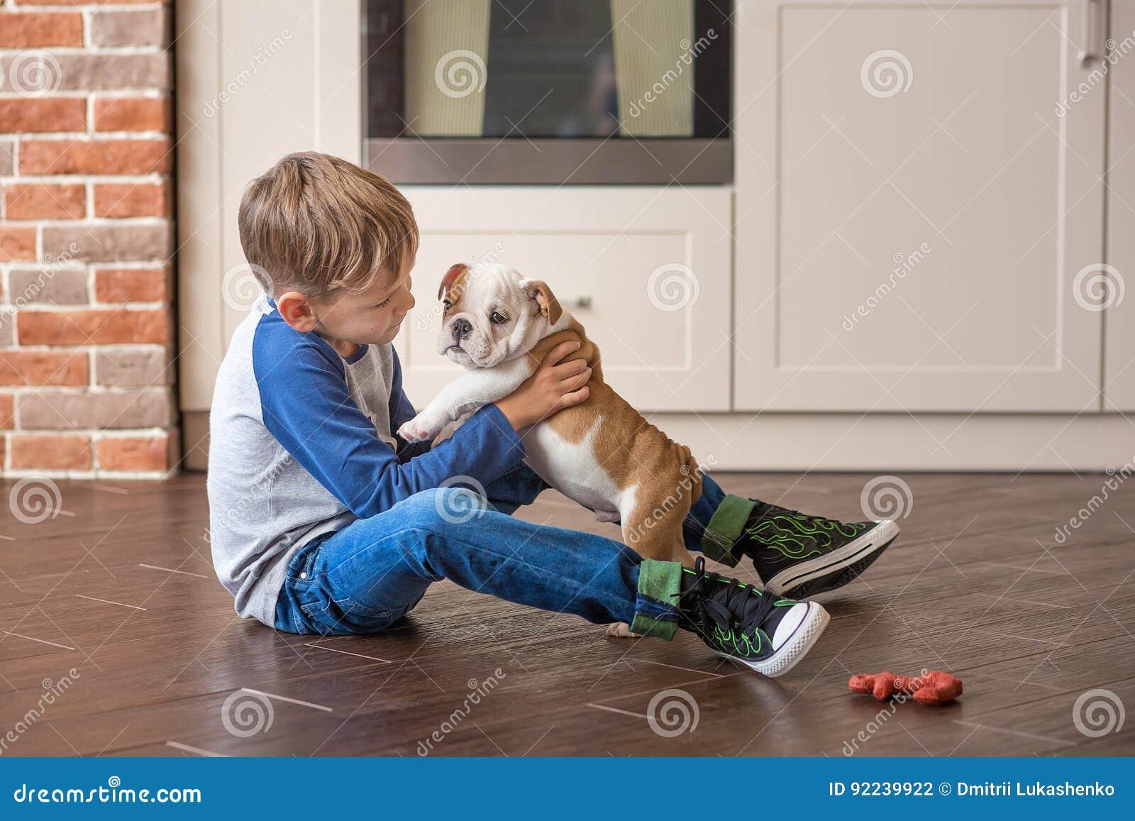 Śliczna chłopiec bawić się z szczeniaków anglików buldogiem