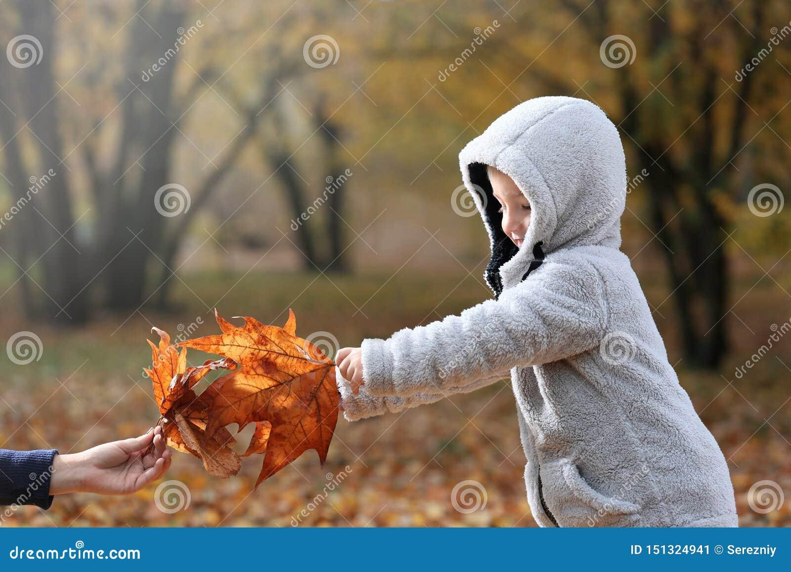 Śliczna chłopiec i jego matka bawić się z liśćmi w jesień parku