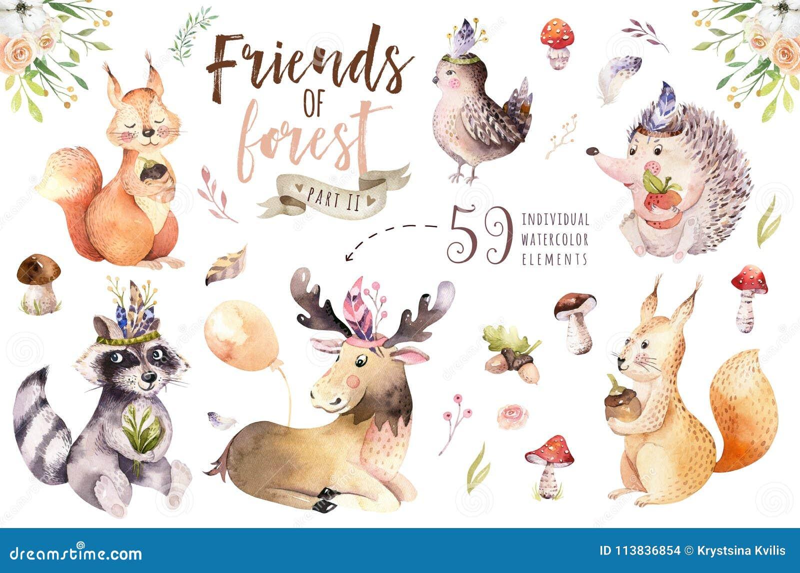 Ślicznej akwareli dziecka kreskówki artystyczny jeż, wiewiórka i łosia amerykańskiego zwierzę dla nursary, las odizolowywaliśmy l