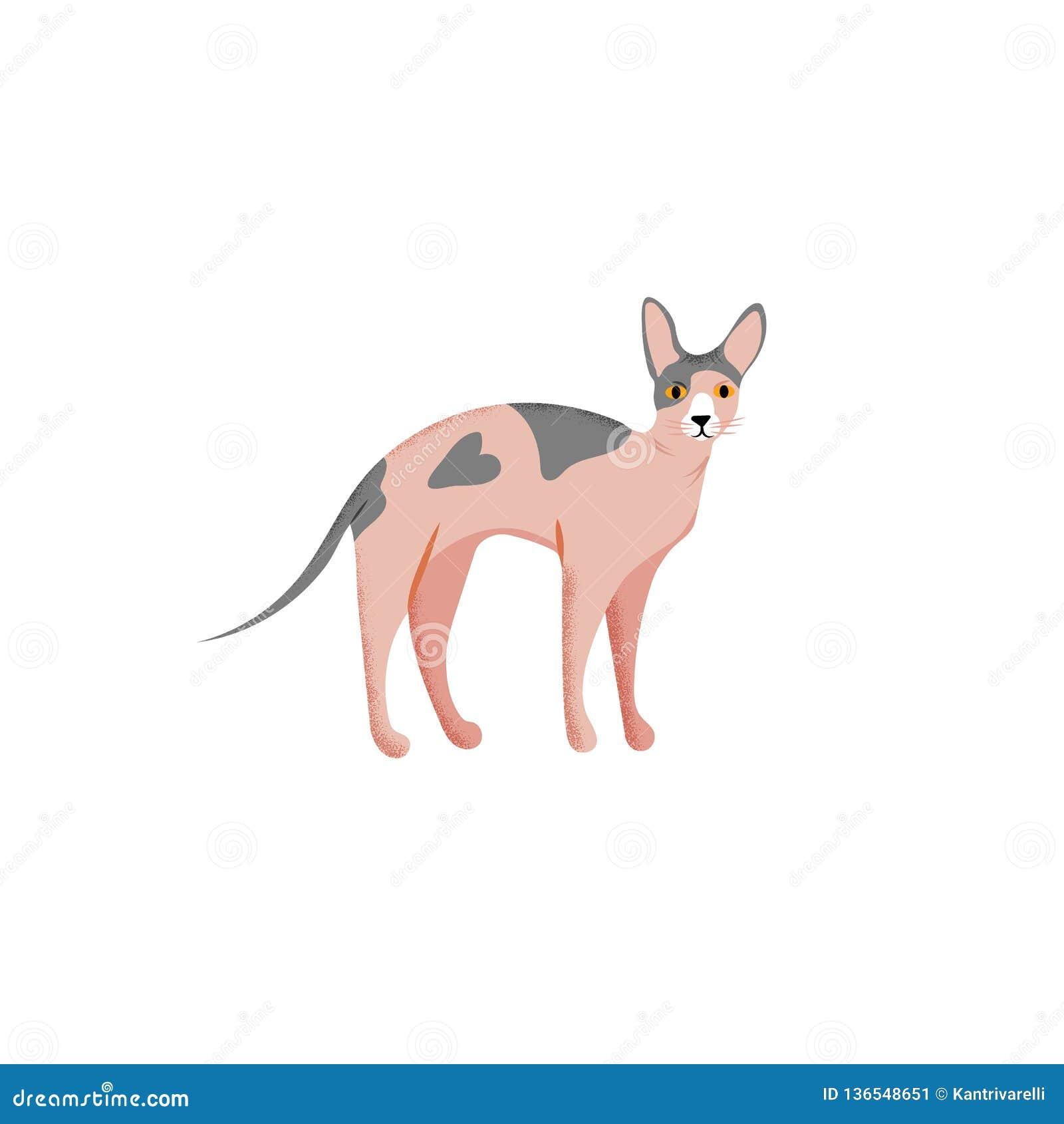 Śliczny charakter kreskówki styl kot Ikona sphynx traken dla różnego projekta