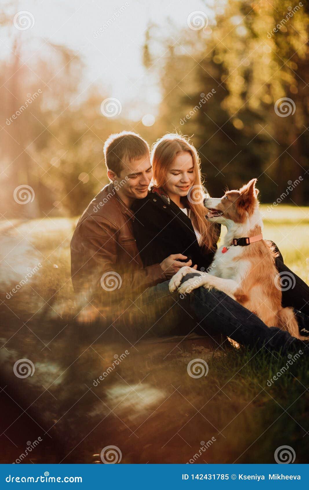 Śliczny cuple z psim Border collie na zieleni polu w parku pod drzewem w świetle słonecznym