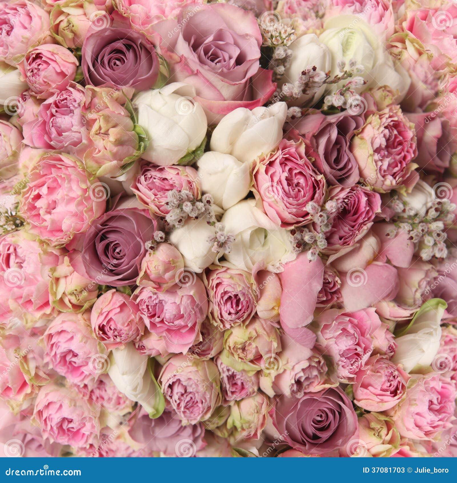 Download Ślubny Bukiet Z Różanym Krzakiem Obraz Stock - Obraz złożonej z miłość, greenbacks: 37081703