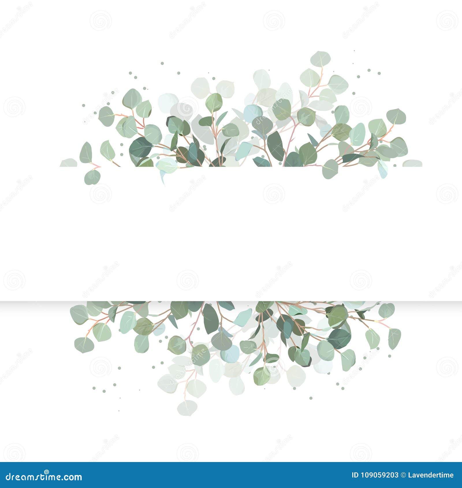 Ślubny eukaliptusowy horyzontalny wektorowy projekta sztandar