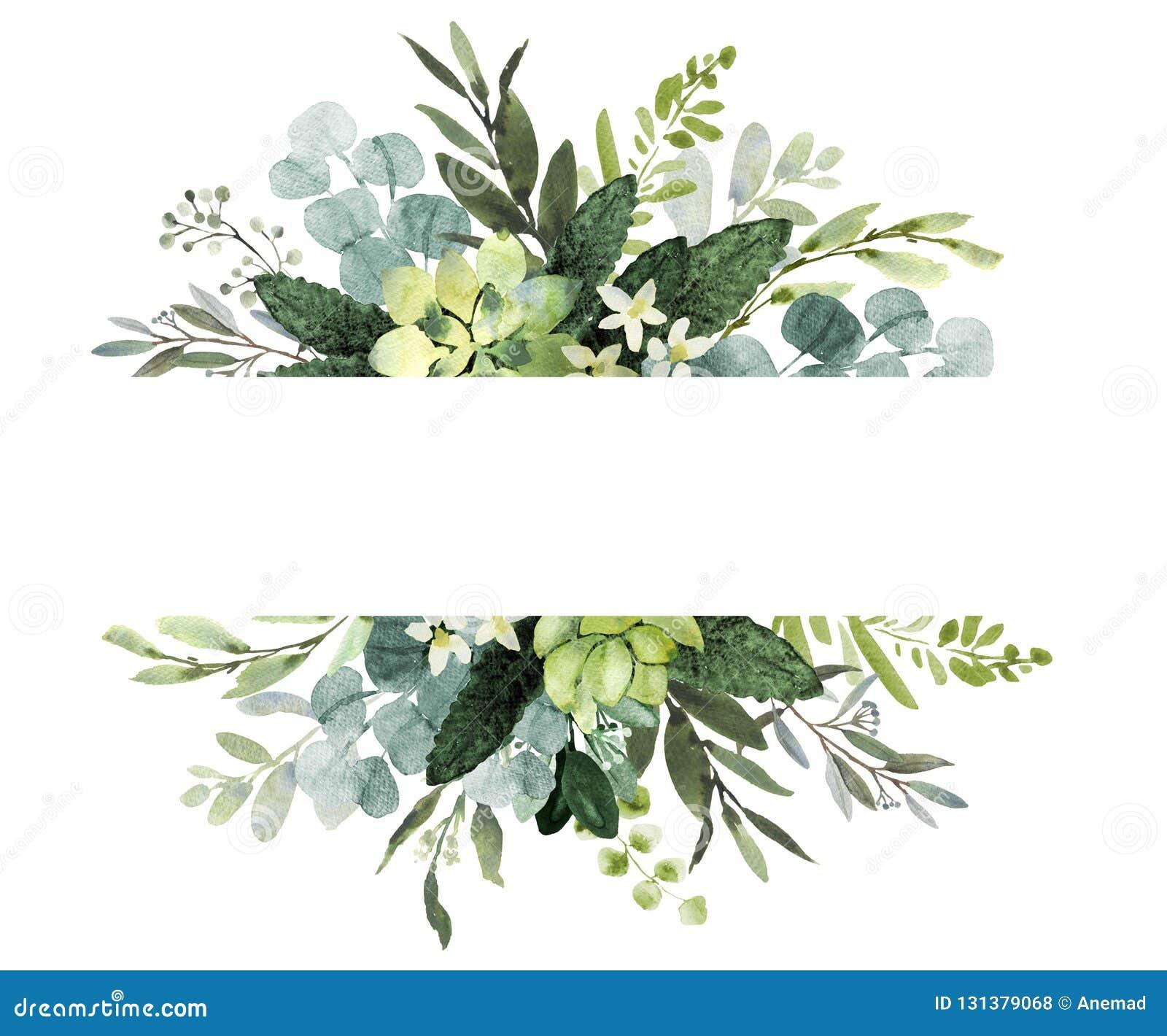 Ślubny greenery obramia Akwareli ilustracja z eukaliptusem gałązki